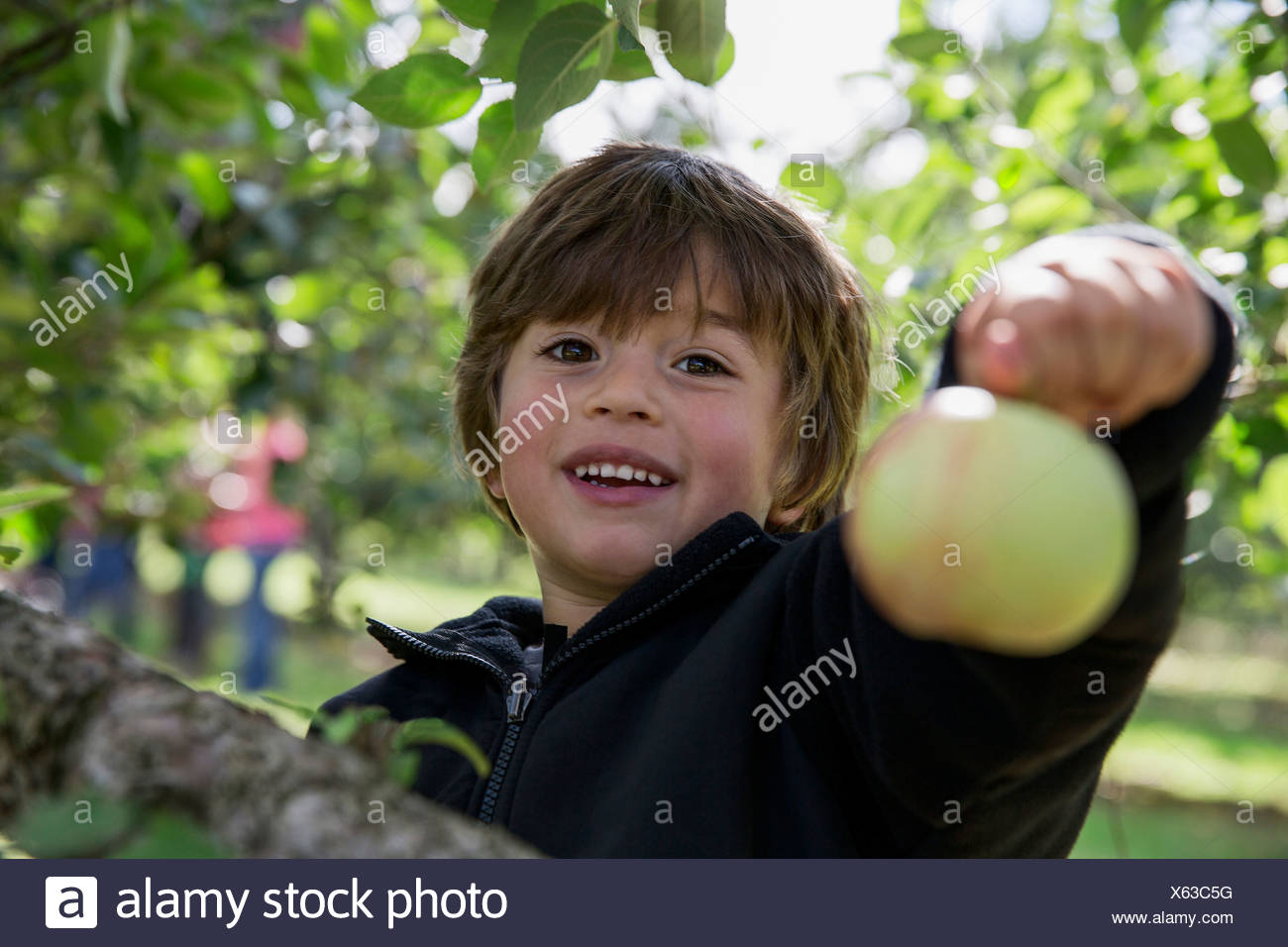 Close Up Fruit Child Stock Photos Amp Close Up Fruit Child