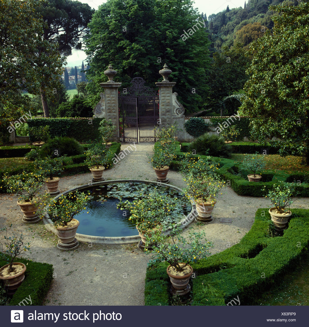 Pool On Formal Terrace Bordered By Clipped Hedges And Shrubs In Pots Italian Country Garden