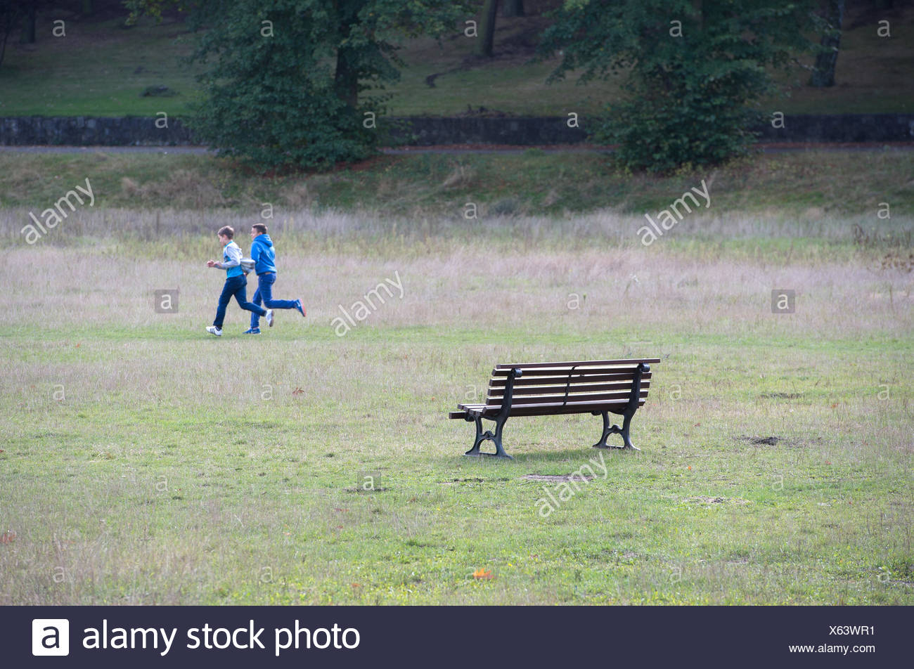 Berlin, Germany, joggers on the so-called playground in the Volkspark Rehberge - Stock Image