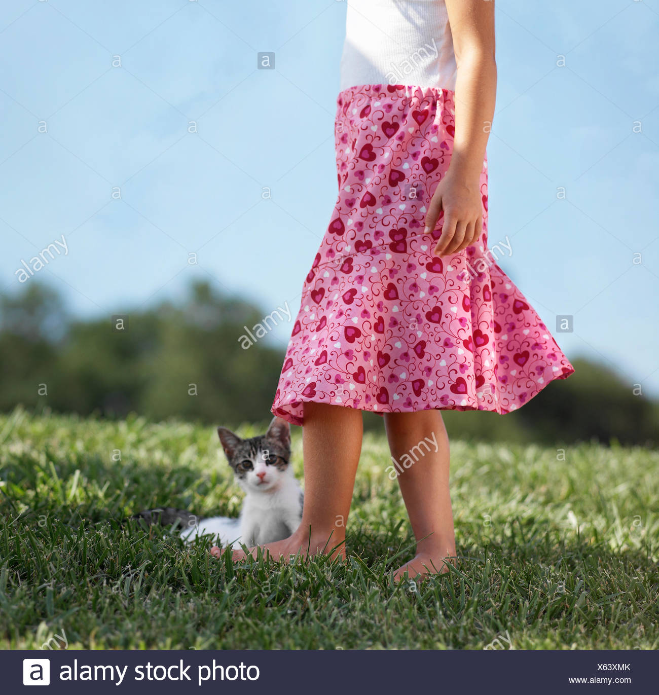 Young girl standing on grass with kitten, low section - Stock Image
