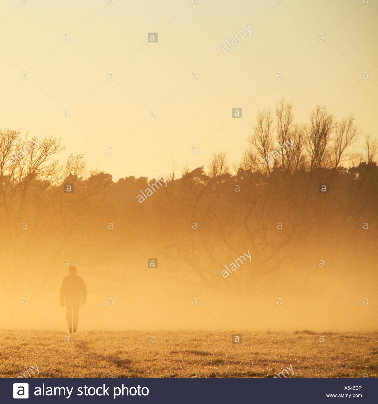 Silhouette of man in field - Stock Image