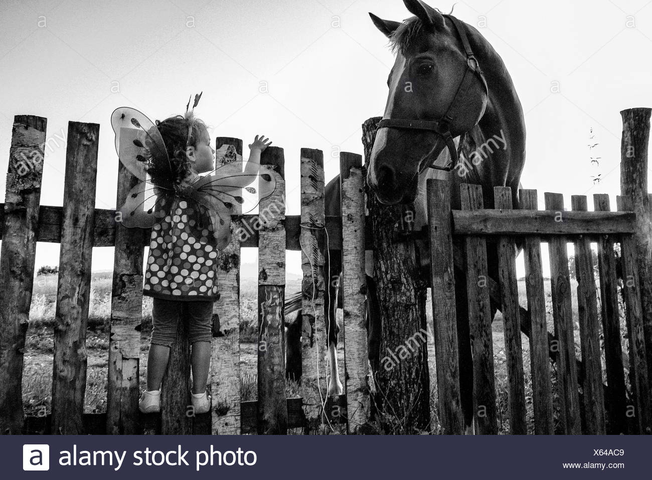 Girl dressed as fairy standing on a fence looking at a horse Stock Photo