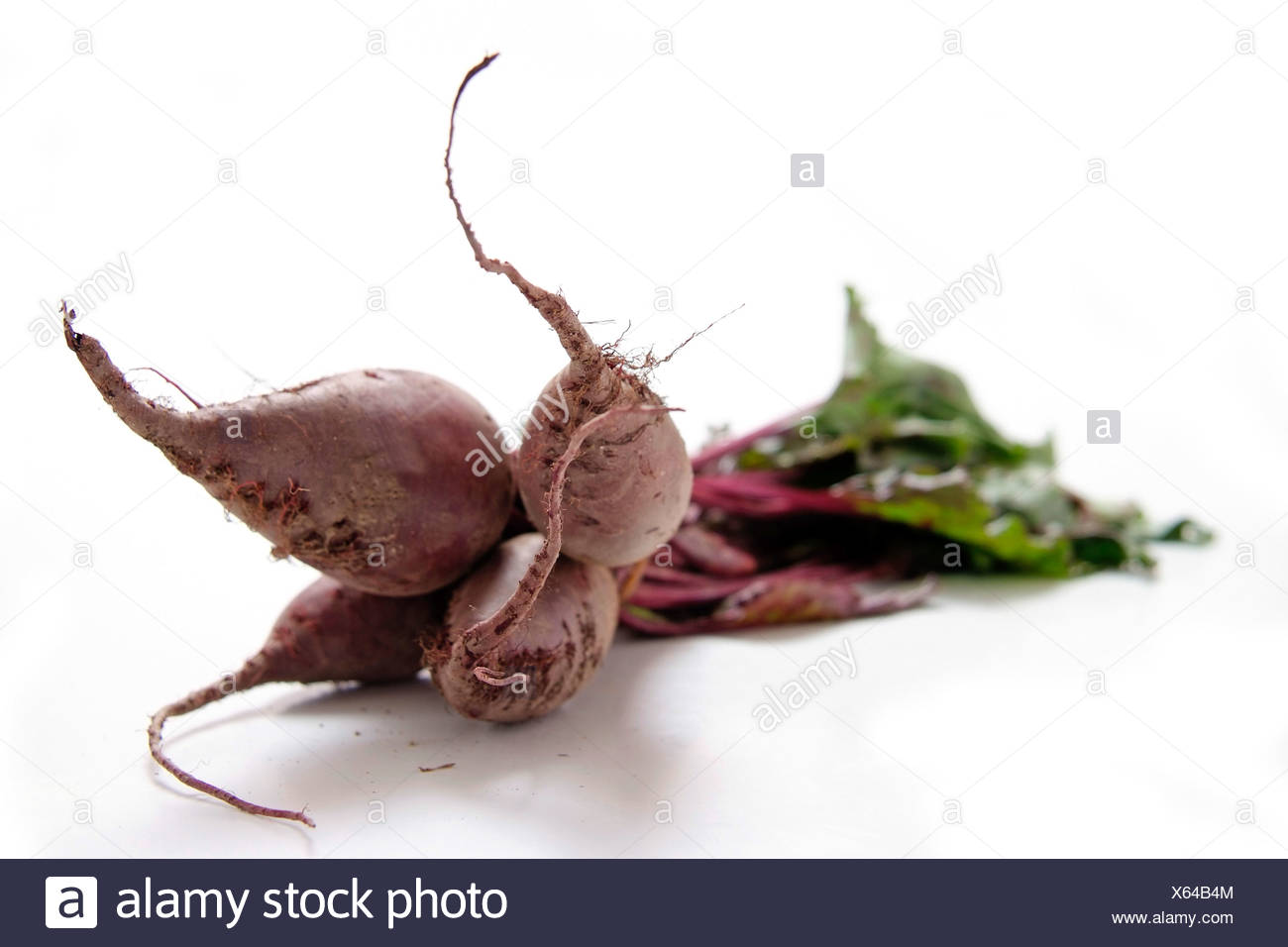 Bundle of beetroot with leaves on white - Stock Image