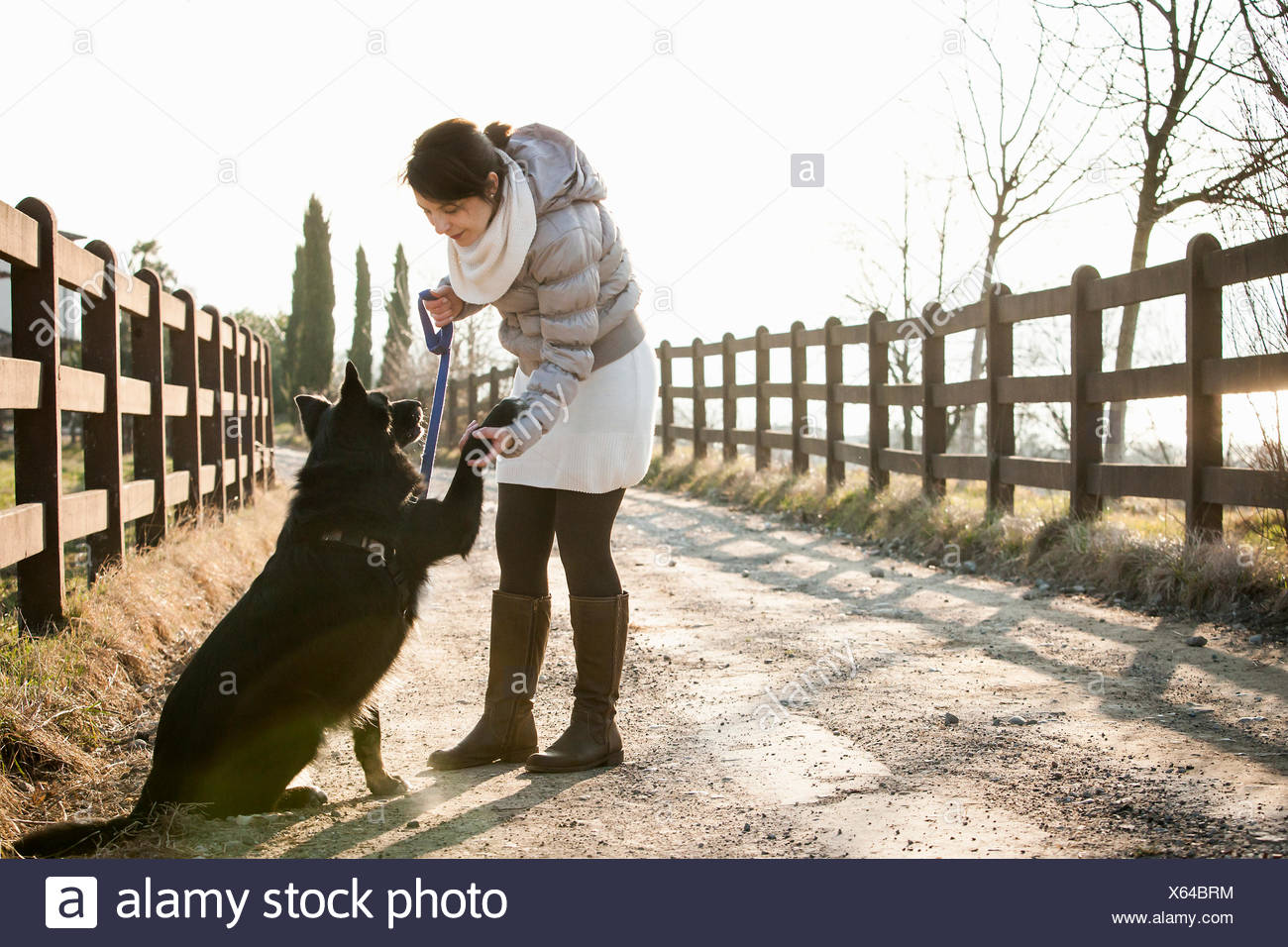 Mid adult woman training her dog to hold up paw on rural road - Stock Image