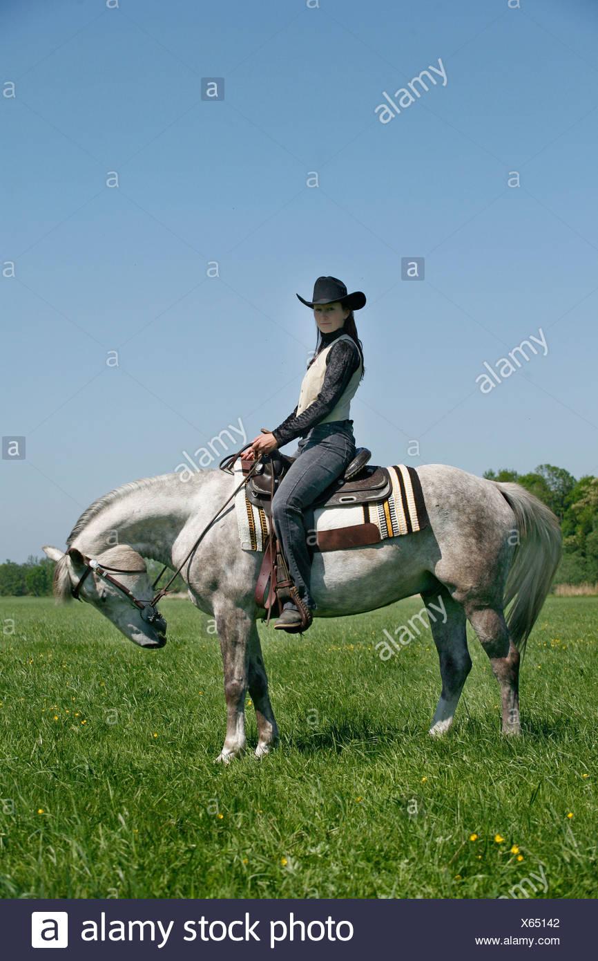 Westernreiter Western Rider Stock Photo Alamy