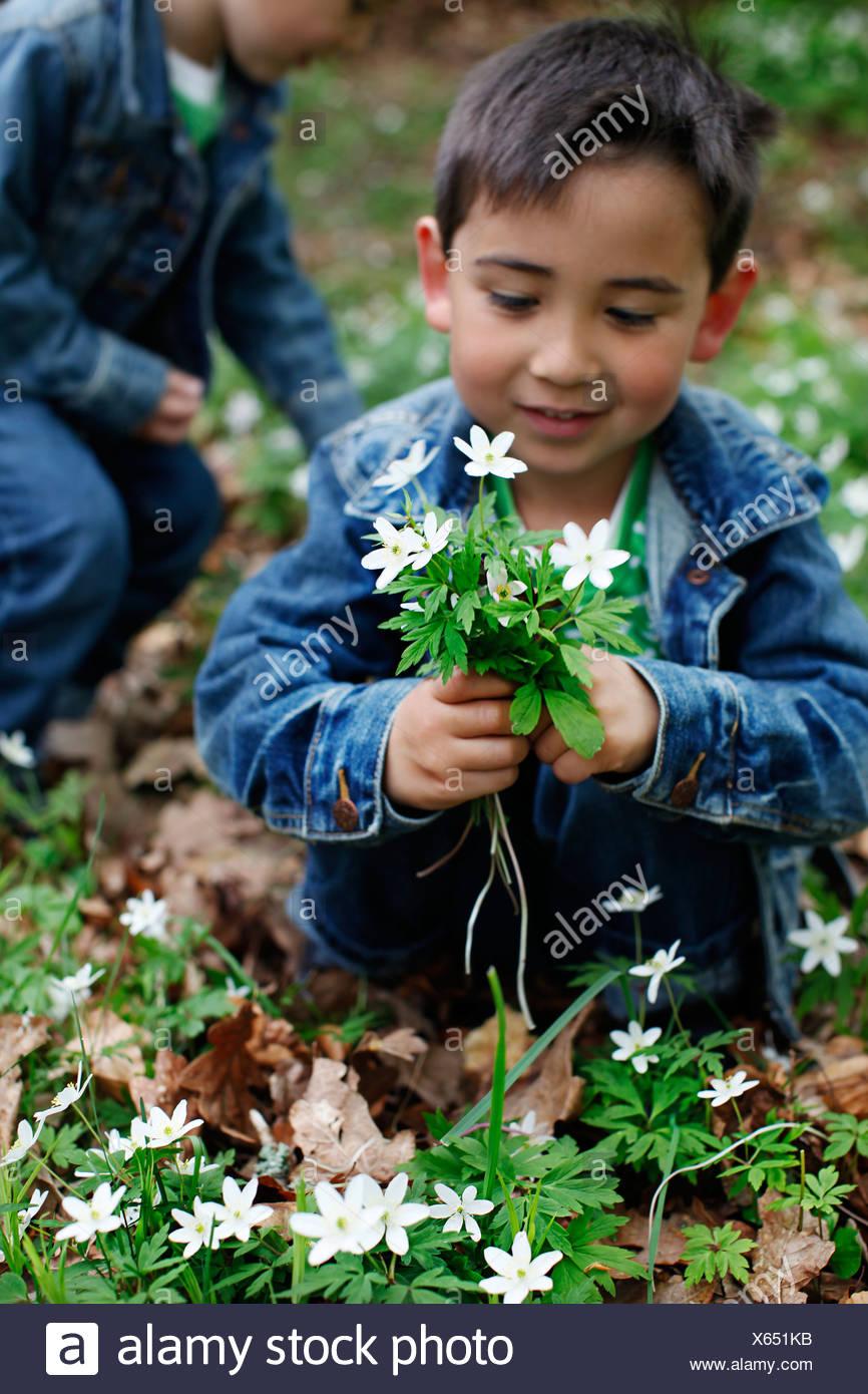 Smiling boy holding flowers - Stock Image