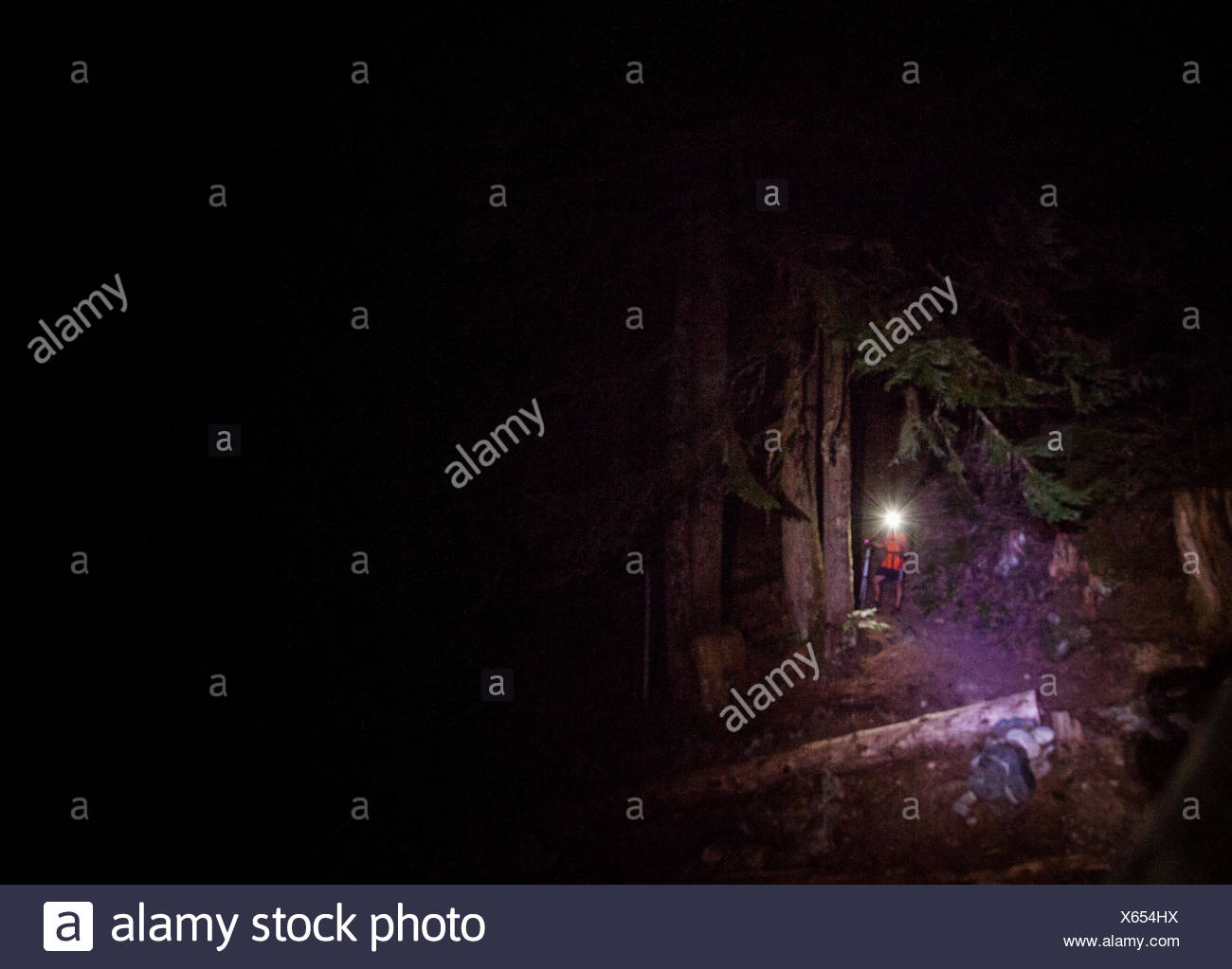 A lone hiker and his headlamp in the forest in a trail in the Glacier Peak Wilderness of Washington. - Stock Image