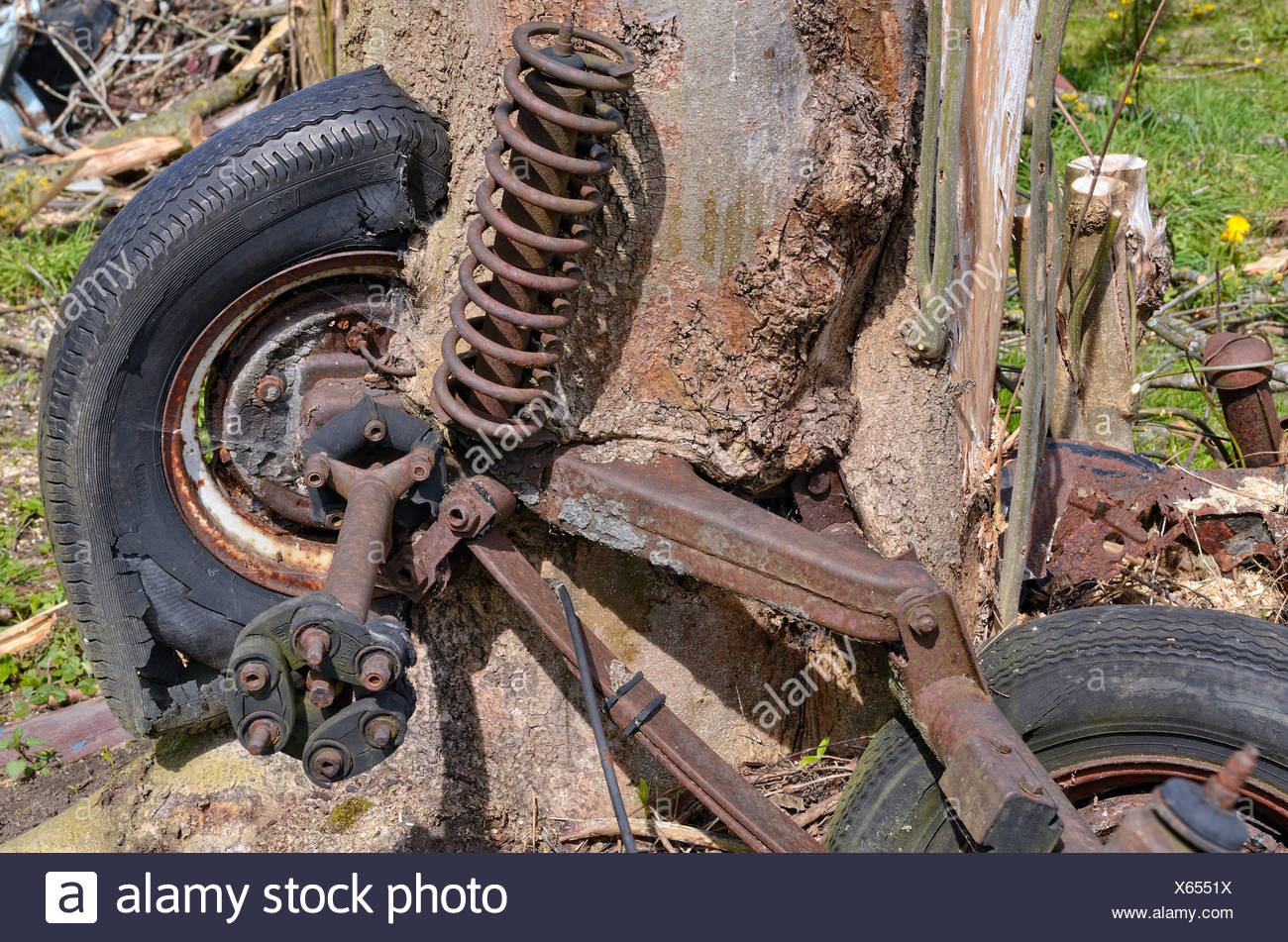 Nature and technology, car axle and wheels, partially overgrown by a willow tree trunk, Miesbach, Upper Bavaria, Bavaria - Stock Image