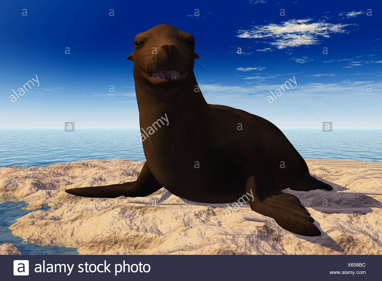 Computer Illustration Of A Seal Smiling - Stock Image