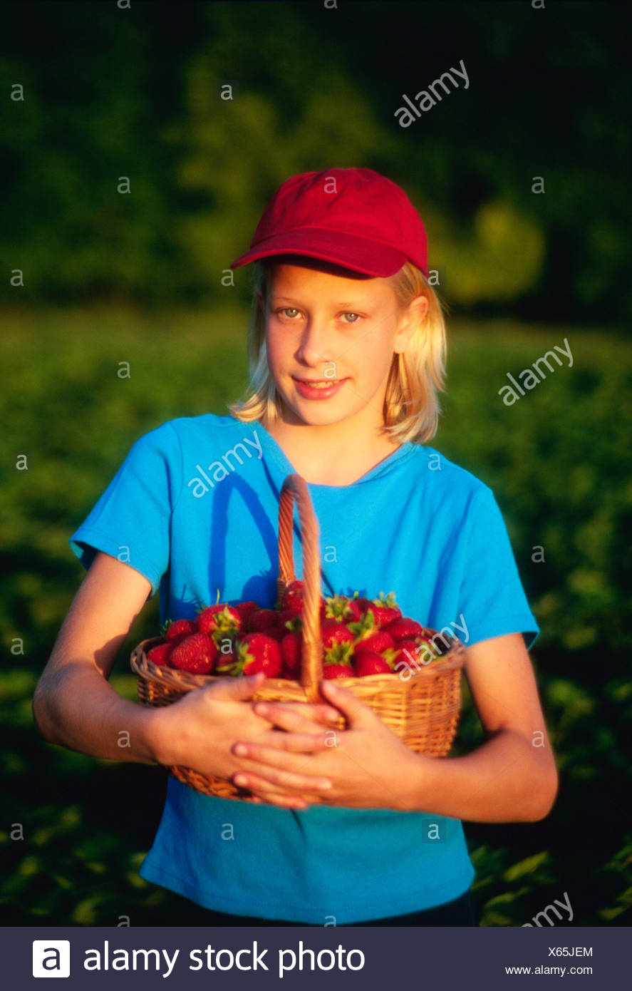 Agriculture - A farm girl poses with freshly picked strawberries in the field / near Niverville, Manitoba, Canada. - Stock Image