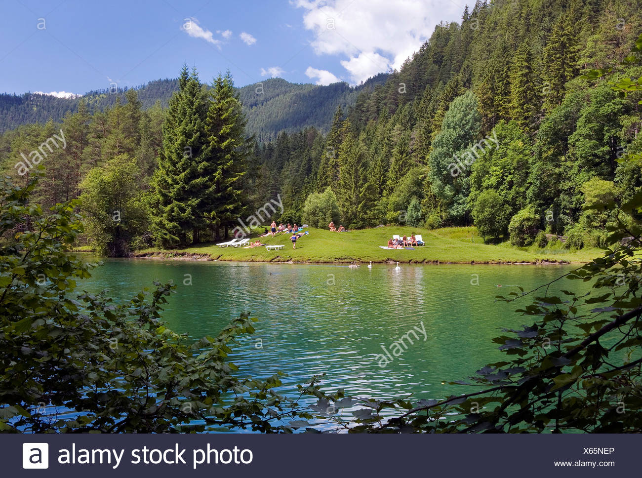 Fernsteinsee lake, bank, swimming guests, summer, Tirol, Austria, Europe - Stock Image