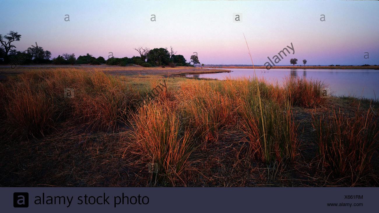 Chobe River at sunset, Botswana, Africa - Stock Image