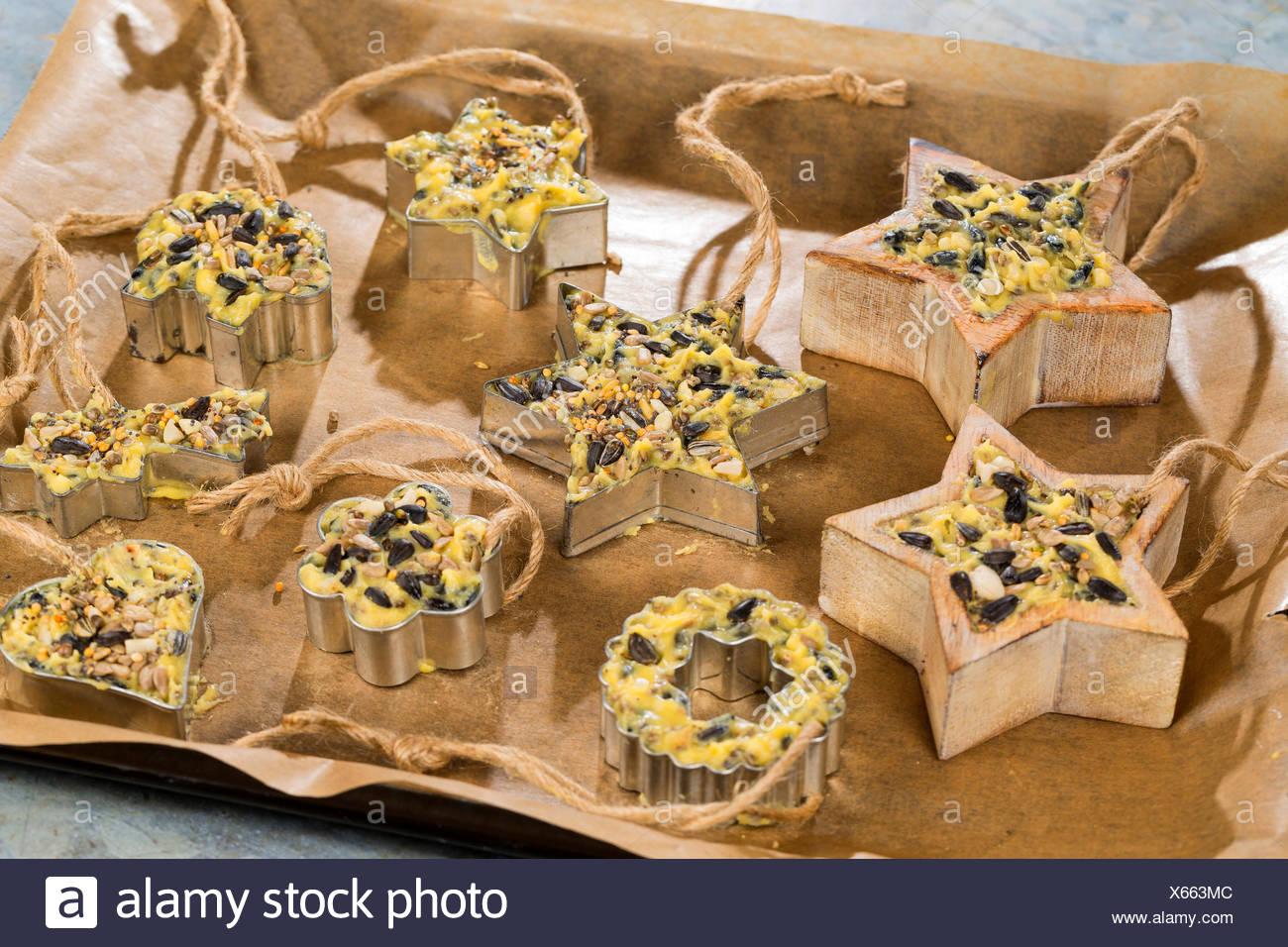 selbstgemachtes Vogelfutter wurde in Foermchen zum Aufhaengen gefuellt | self made birdseeds are filled in jars | BLWS419323.jpg Stock Photo