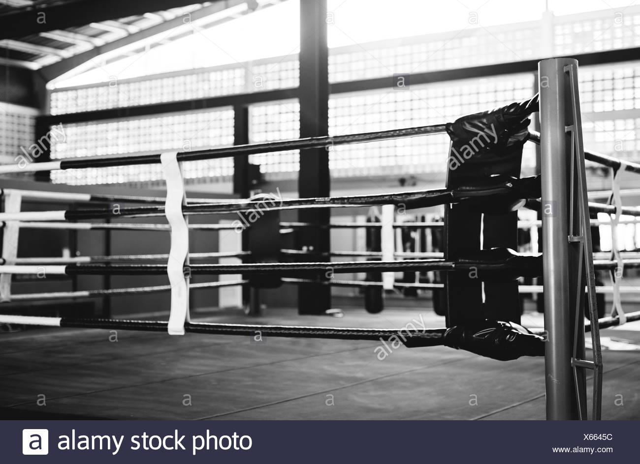 Boxing ring arena stadium fighting competitive sport concept stock image