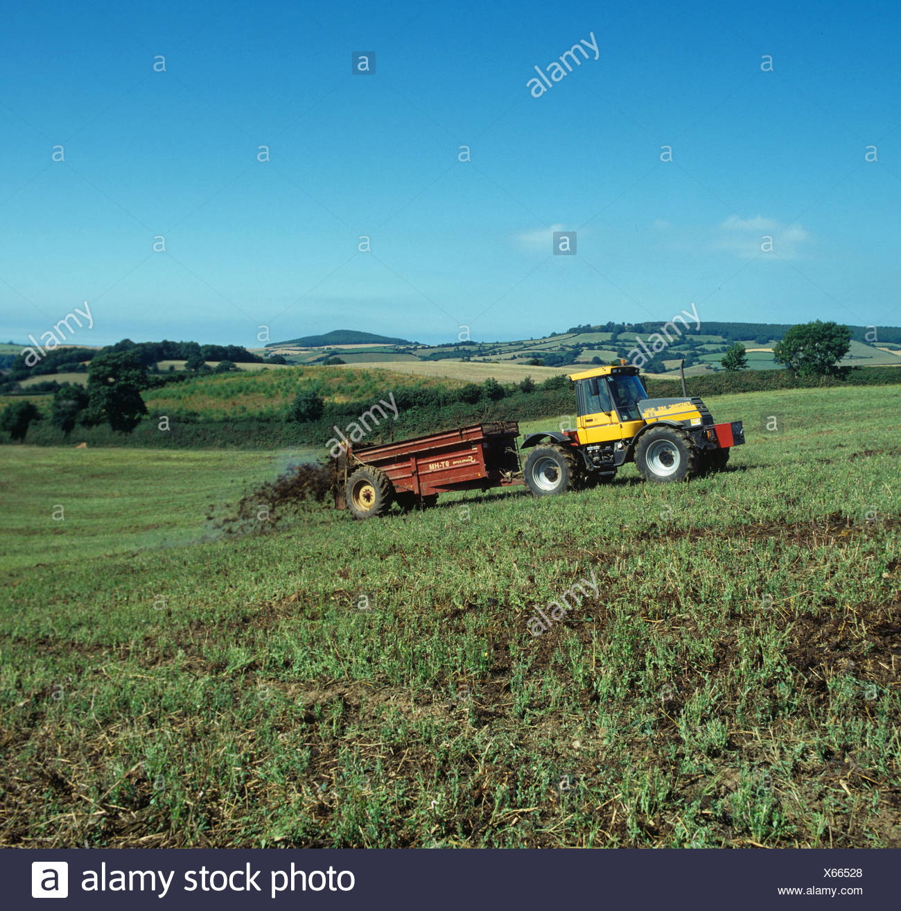 Fastrac tractor spreading manure from a dairy herd onto an uncultivated coastal field, Devon Stock Photo