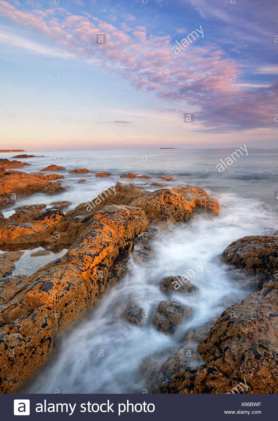 ROCKY SHORELINE with Farne Islands on horizon. Bamburgh. Northumberland. England - Stock Image