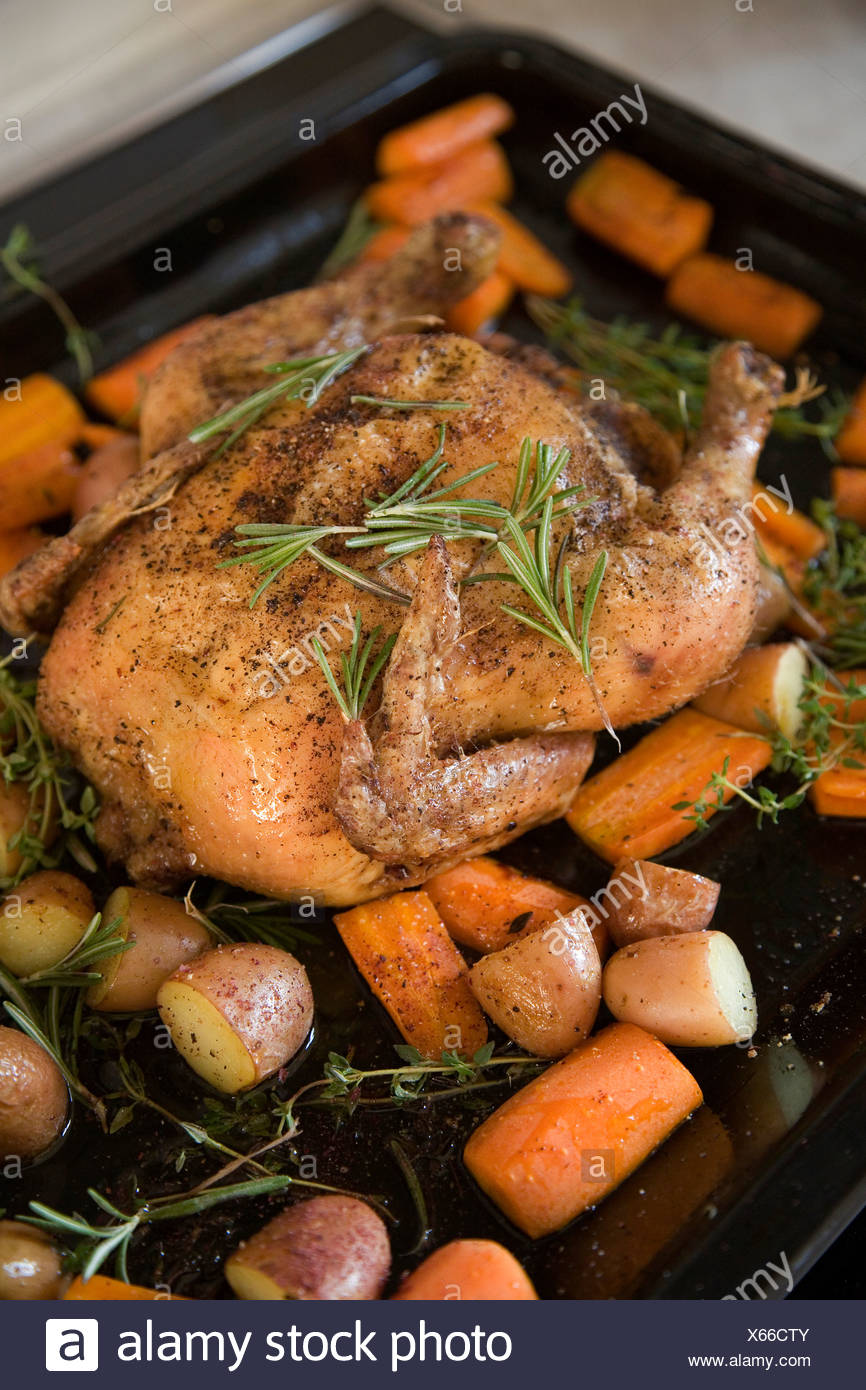 A roast chicken on a baking tray with rosemary, carrots, potatoes and sweet potatoes Stock Photo