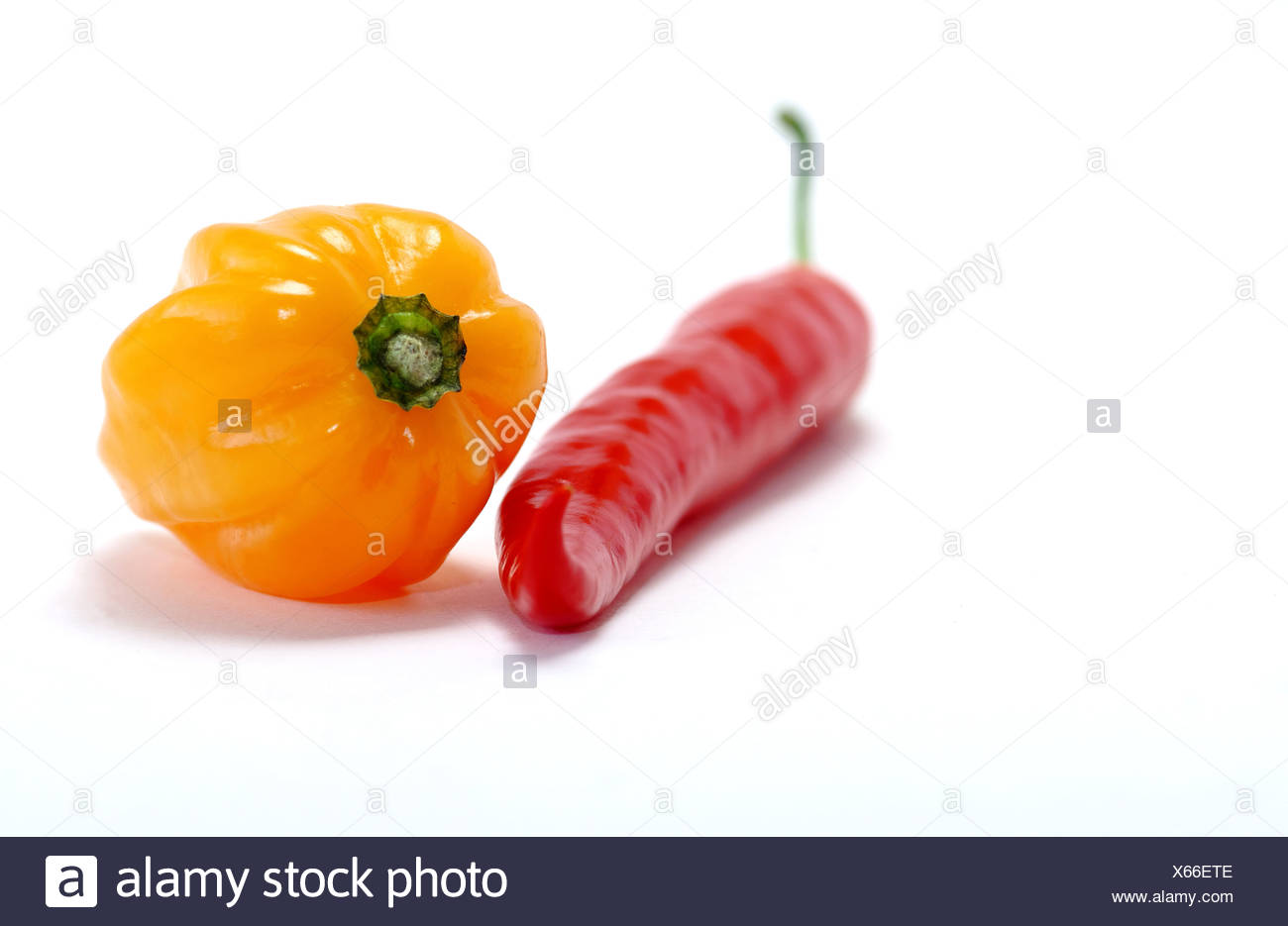 Orange, Habanero, Red Pepper, Stock Photo