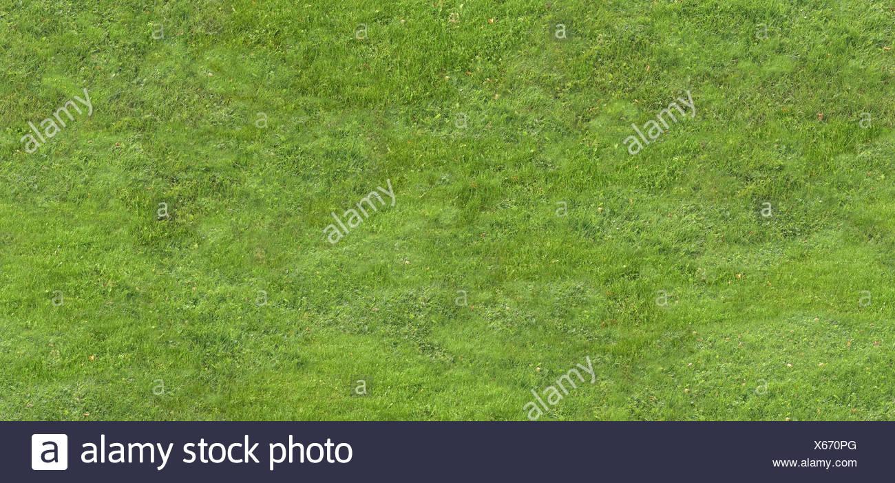 Turfs, grass, meadow, - Stock Image