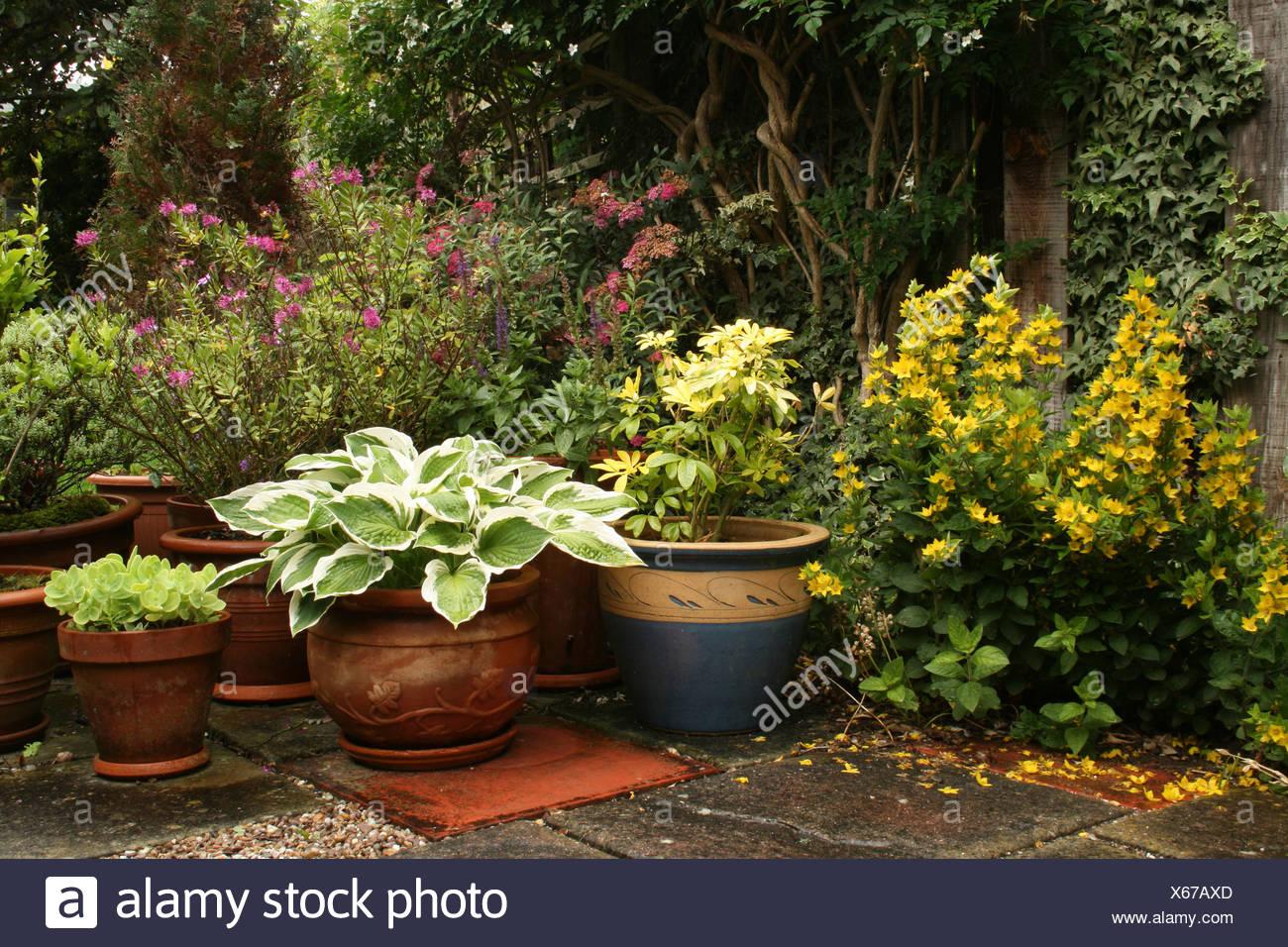 An Arrangement Of Patio Pots In An English Garden Stock Photo Alamy