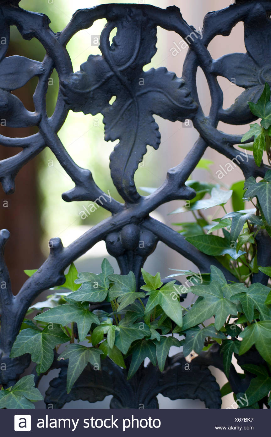 Decorative Cast Iron Stock Photos & Decorative Cast Iron Stock ...