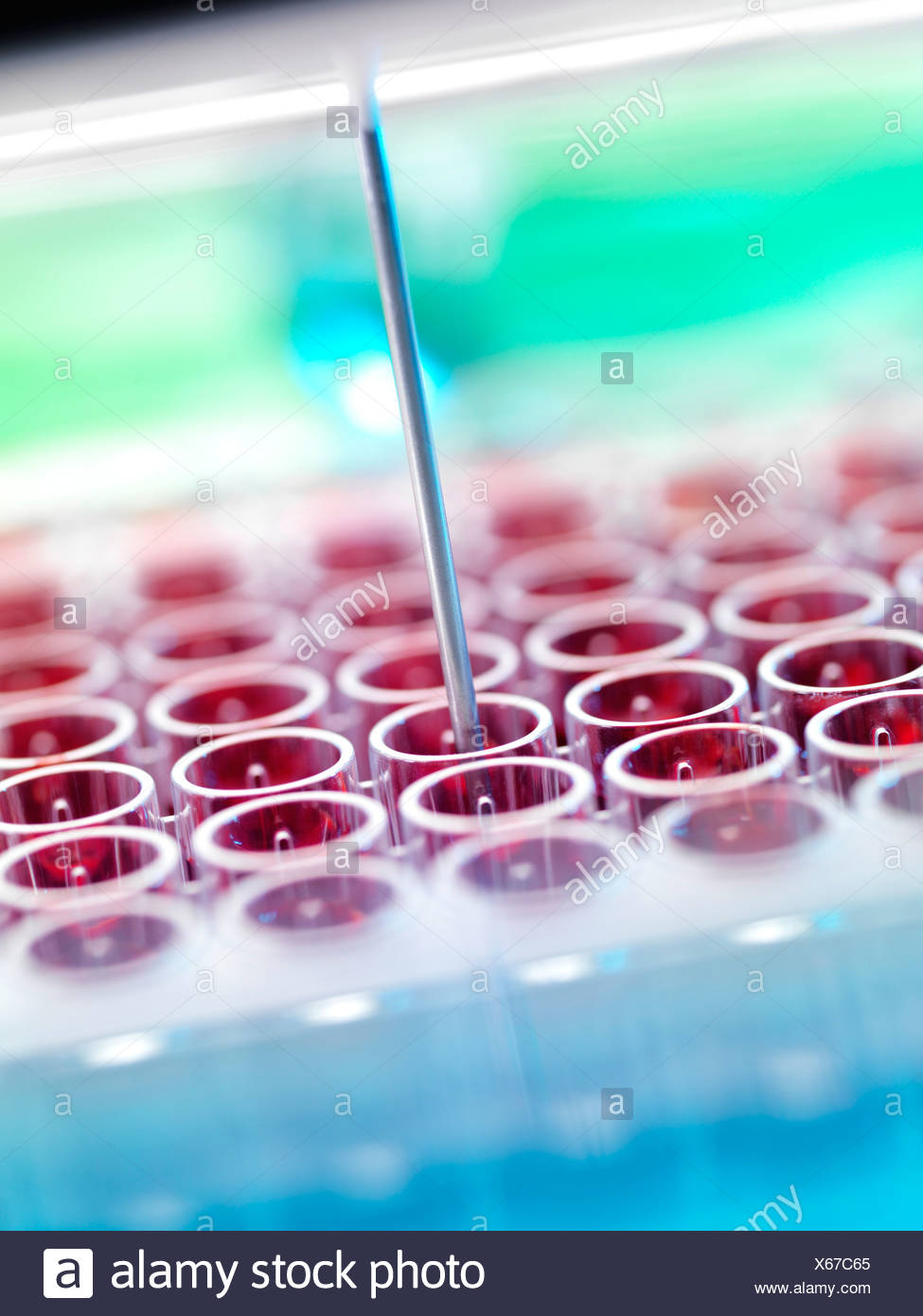 Automated blood screening - Stock Image