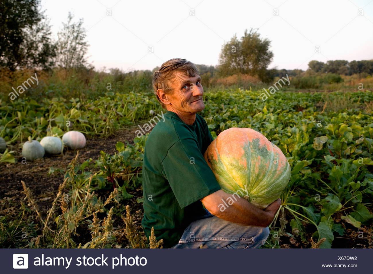 portrait of peasant sitting in garden holding pumpkin - Stock Image