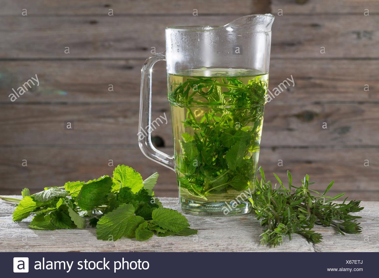 Lemon balm, Garden balm (Melissa officinalis), tea from lemon balm and goosegrass, Germany Stock Photo