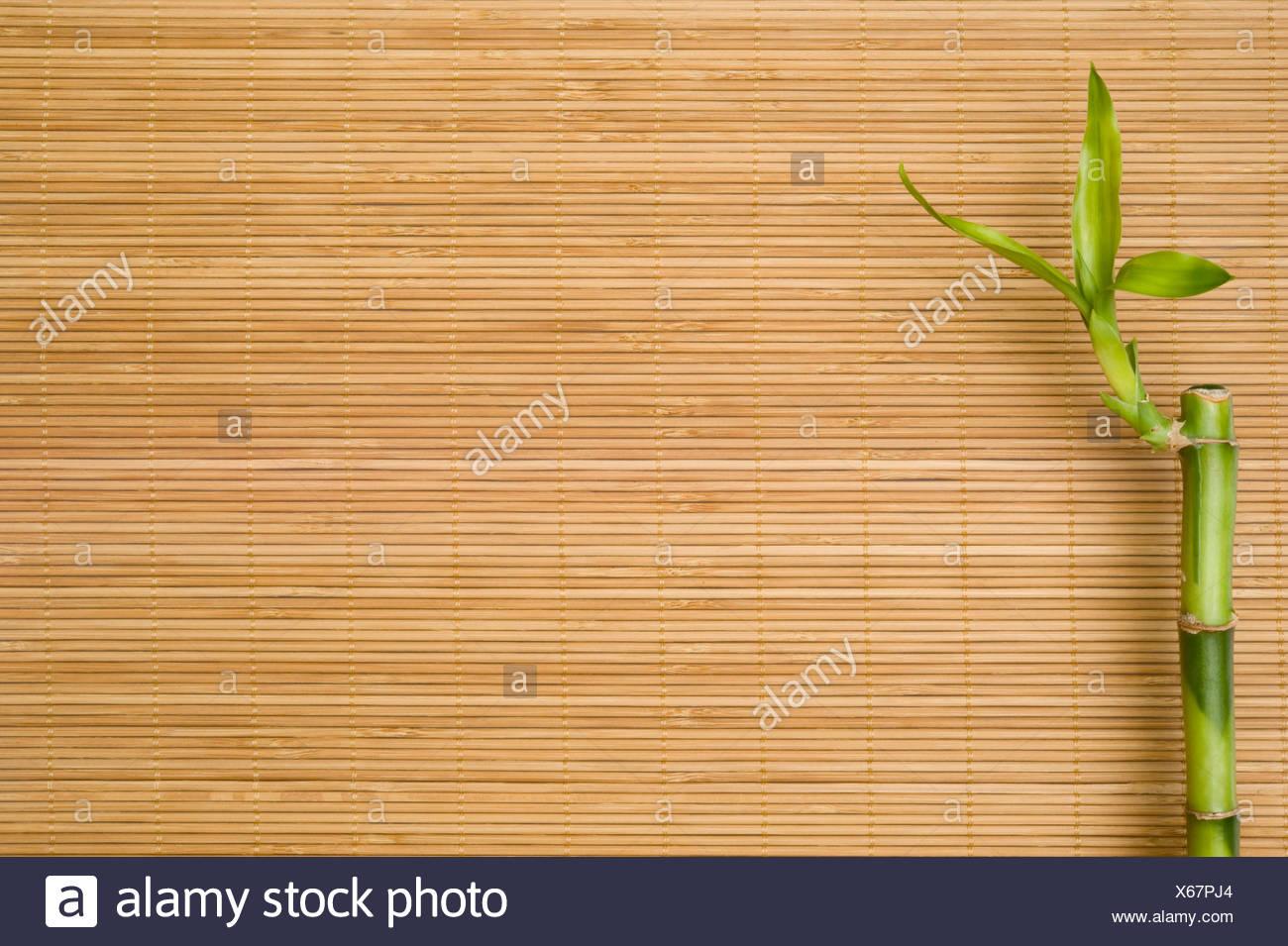 wellness bamboo bast - Stock Image