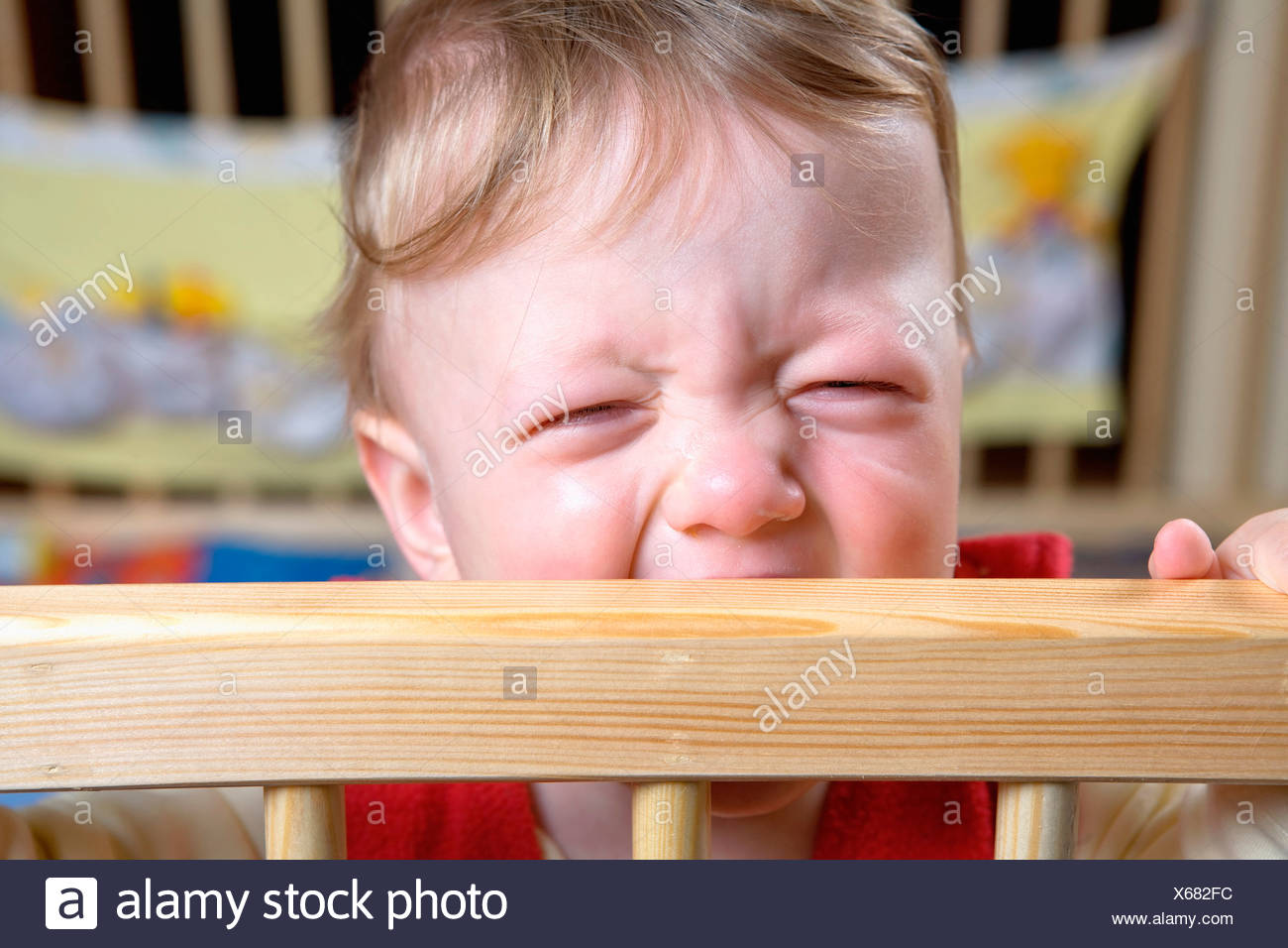 6 - 12 months 6 to 12 months Angry Babies Baby Bar Bars Caucasian Caucasians Child Children Close-up Conte - Stock Image