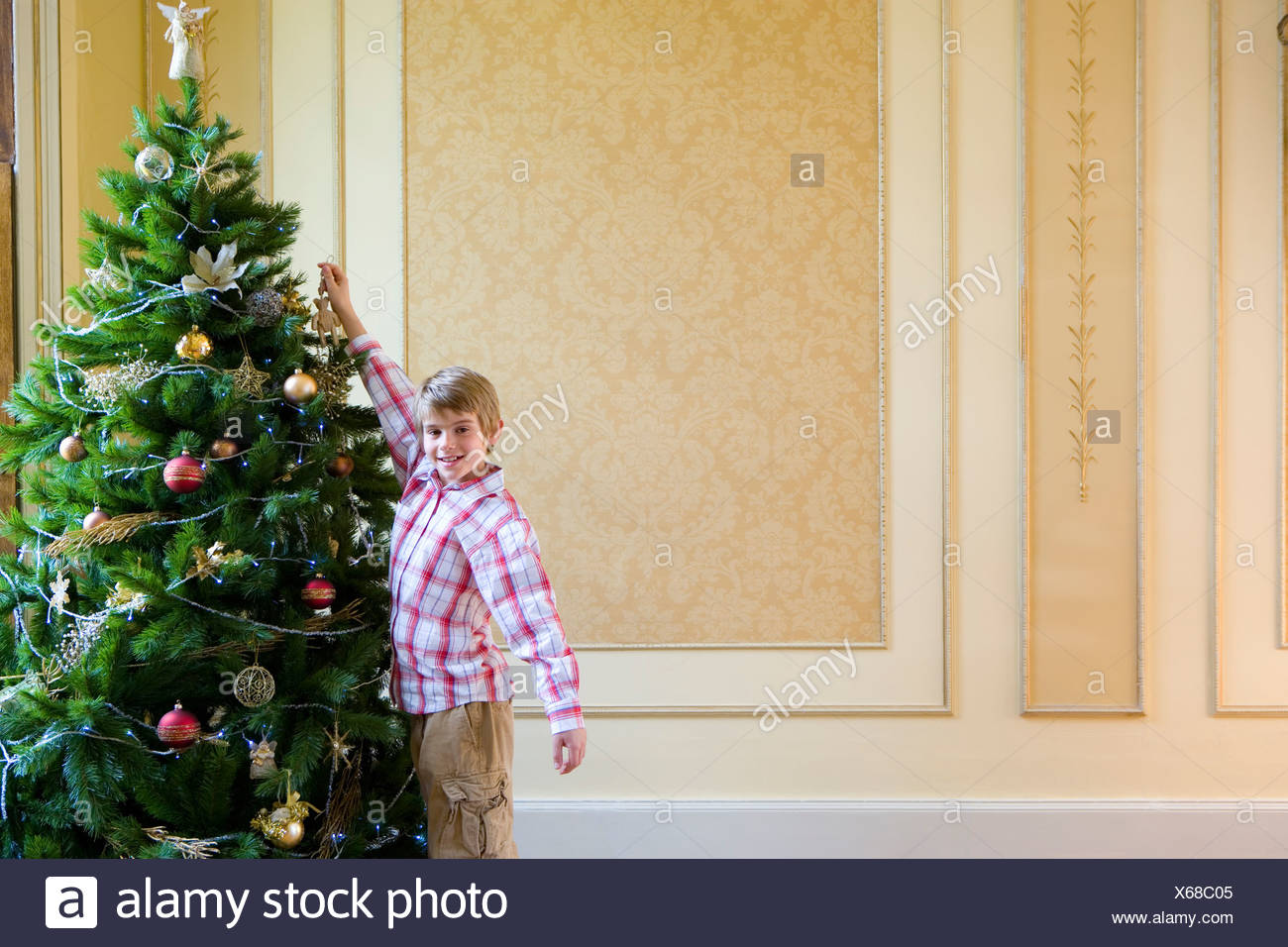 Boy (7-9) hanging decoration on Christmas tree, smiling portrait - Stock Image