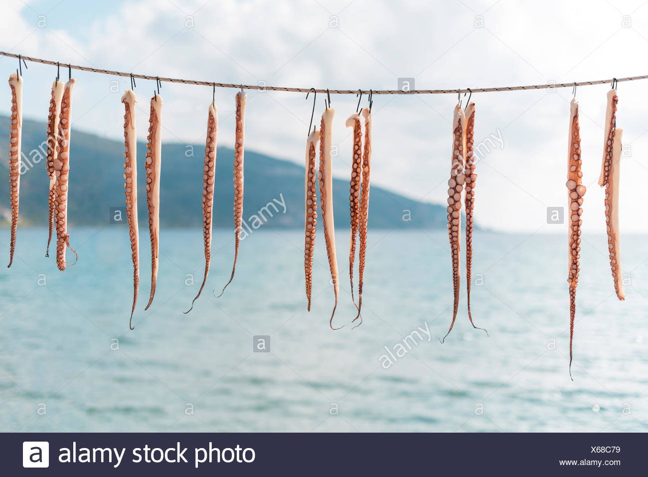 Octopus tentacles hanging to dry on the Mani peninsula in the Peloponnese in Greece. - Stock Image
