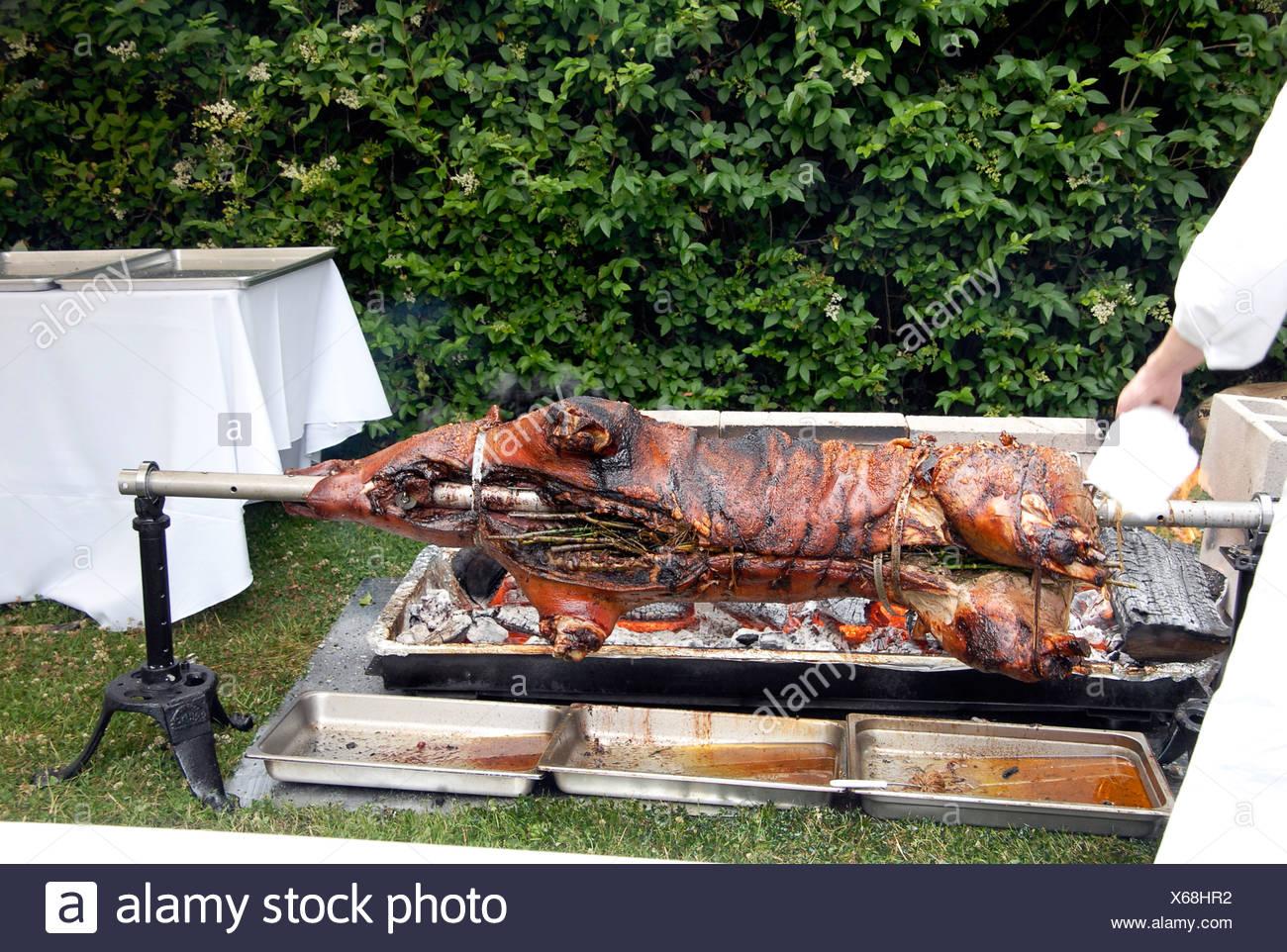 Pig on spit / Hog roast - Stock Image