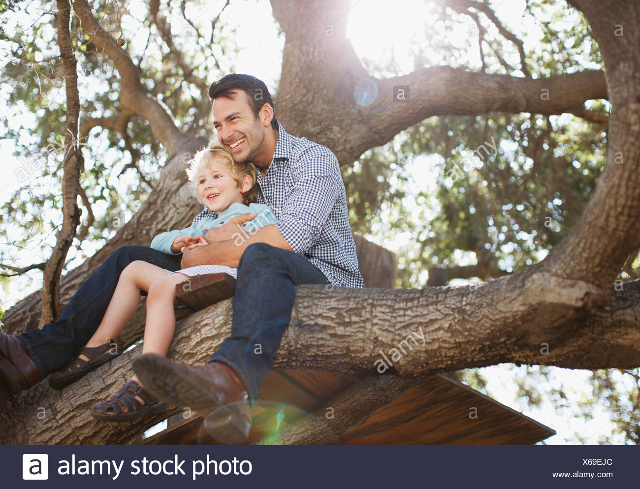 Father and son hugging in tree - Stock Image