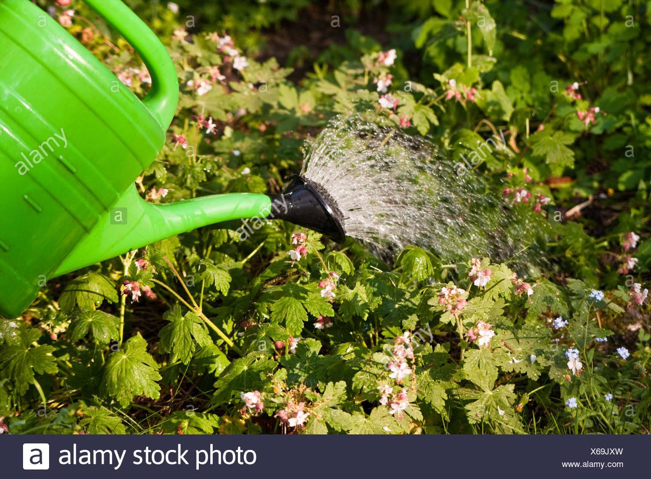 Elefant Gießkanne Sprinkler Garten Gewächshaus  Zimmerpflanzen Garten Sprinkler