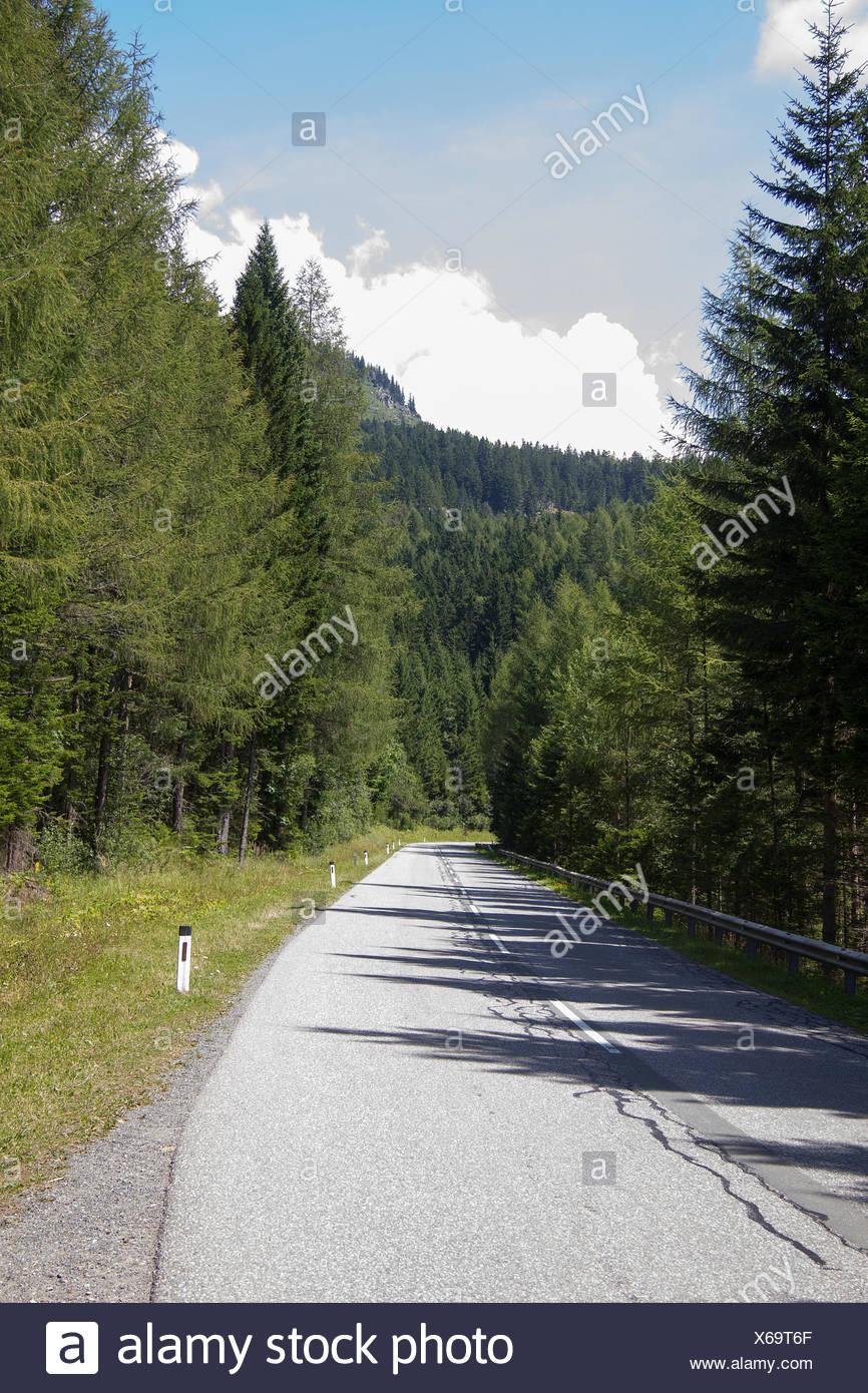 Asphaltstraße auf einer Alm in der Steiermark Stock Photo
