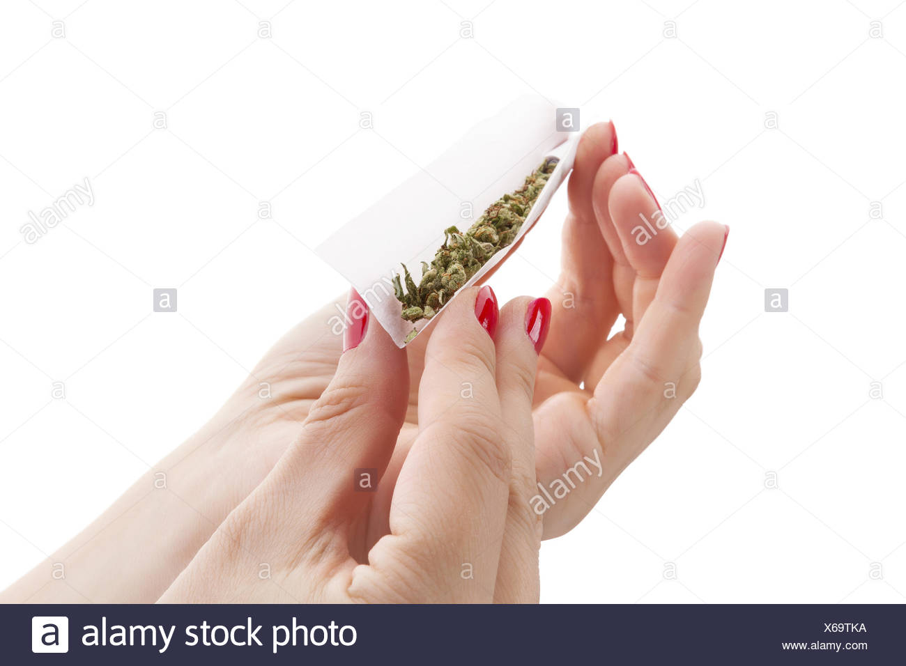 Preparing a cannabis joint. - Stock Image
