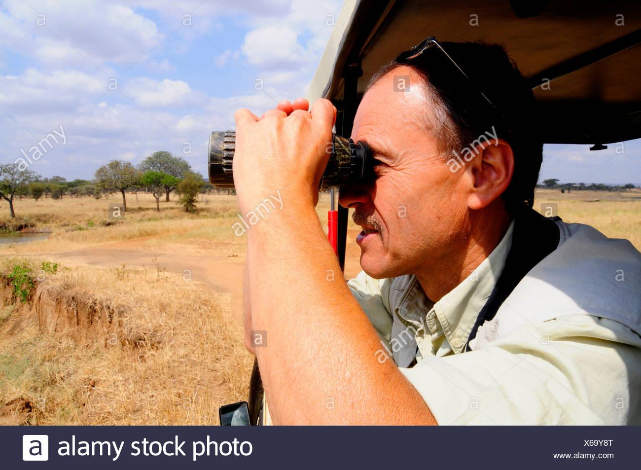 Tourists observing animals, Tarangire-National Park, Tanzania, Africa - Stock Image
