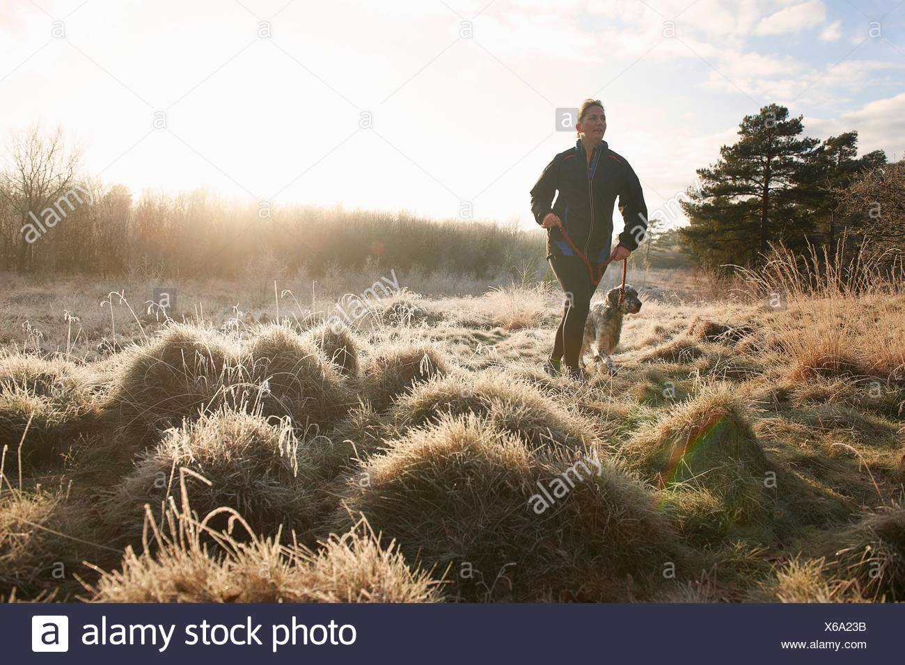 Front view of mature woman walking dog on grassland looking away - Stock Image