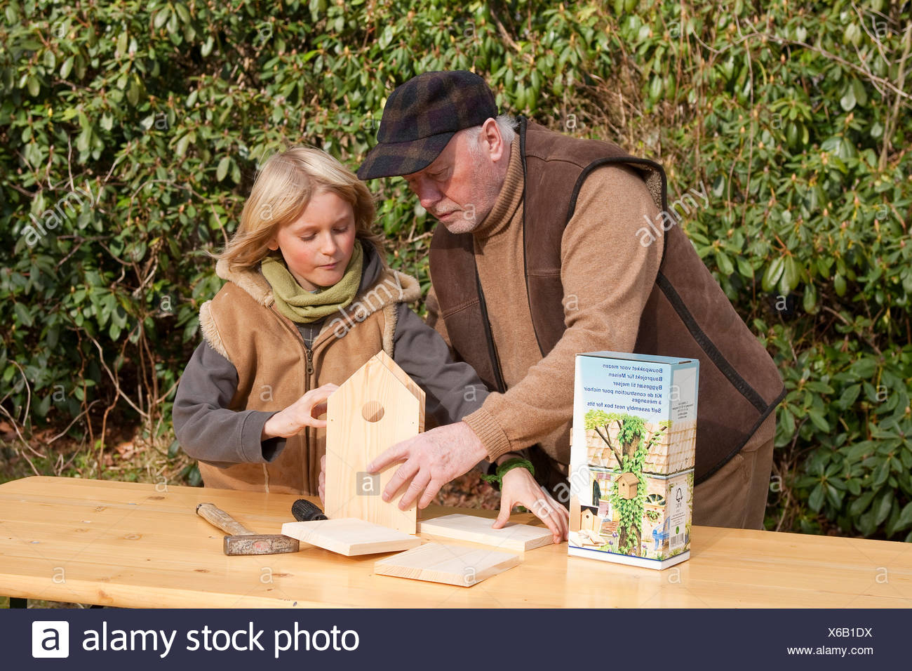 nest box construction, grandpa and grandson assembling wooden nest box , Germany - Stock Image