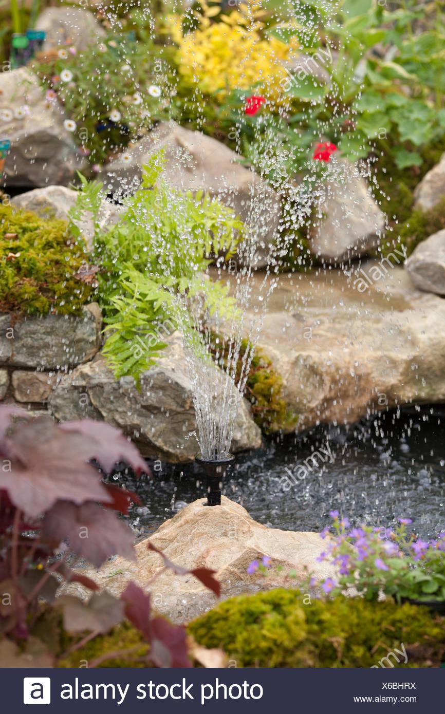 Fountain and garden pound Stock Photo: 279309294 - Alamy