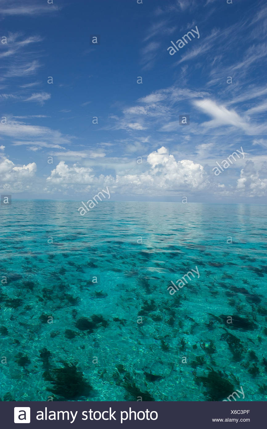 SERENE VIEW OF CALM OCEAN WATER NEAR WEST END GRAND BAHAMA ISLAND BAHAMAS - Stock Image