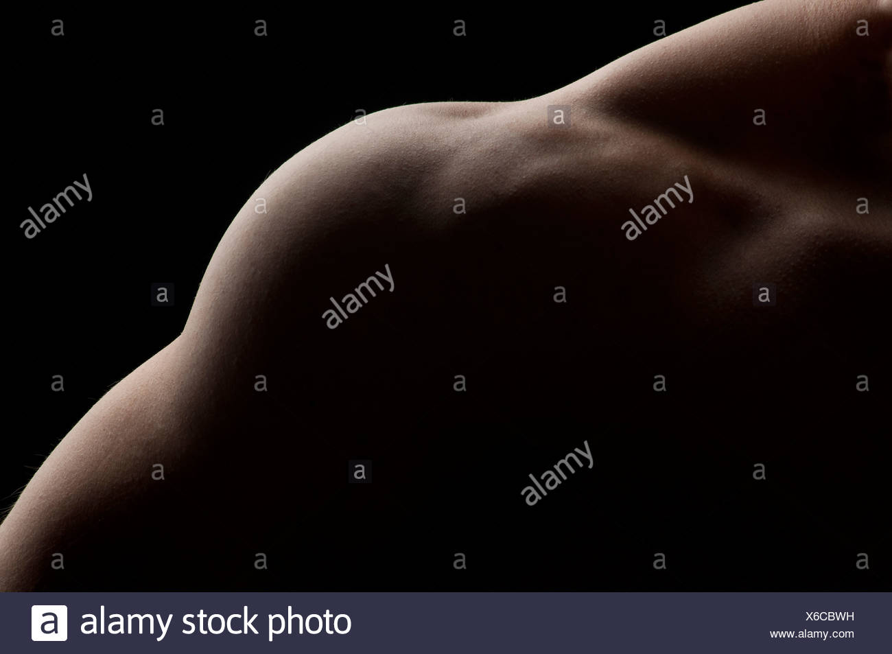 Detail of part of a male torso, featuring trapezius, deltoid and triceps muscles Stock Photo