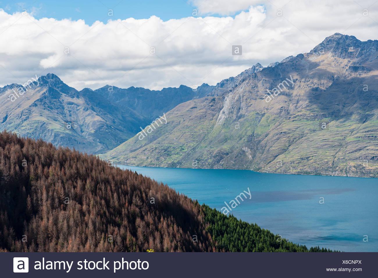 View of Lake Wakatipu, Ben Lomond, Otago, South Island, New Zealand - Stock Image
