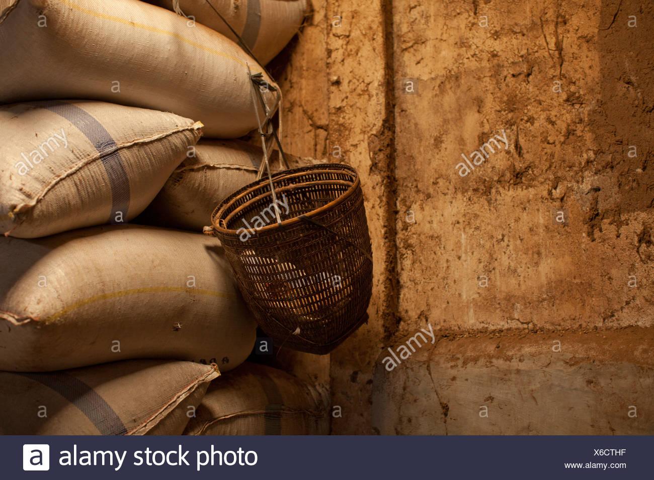 Sacks Of Coffee Beans; Muara Pinang Sumatera Selatan Indonesia - Stock Image
