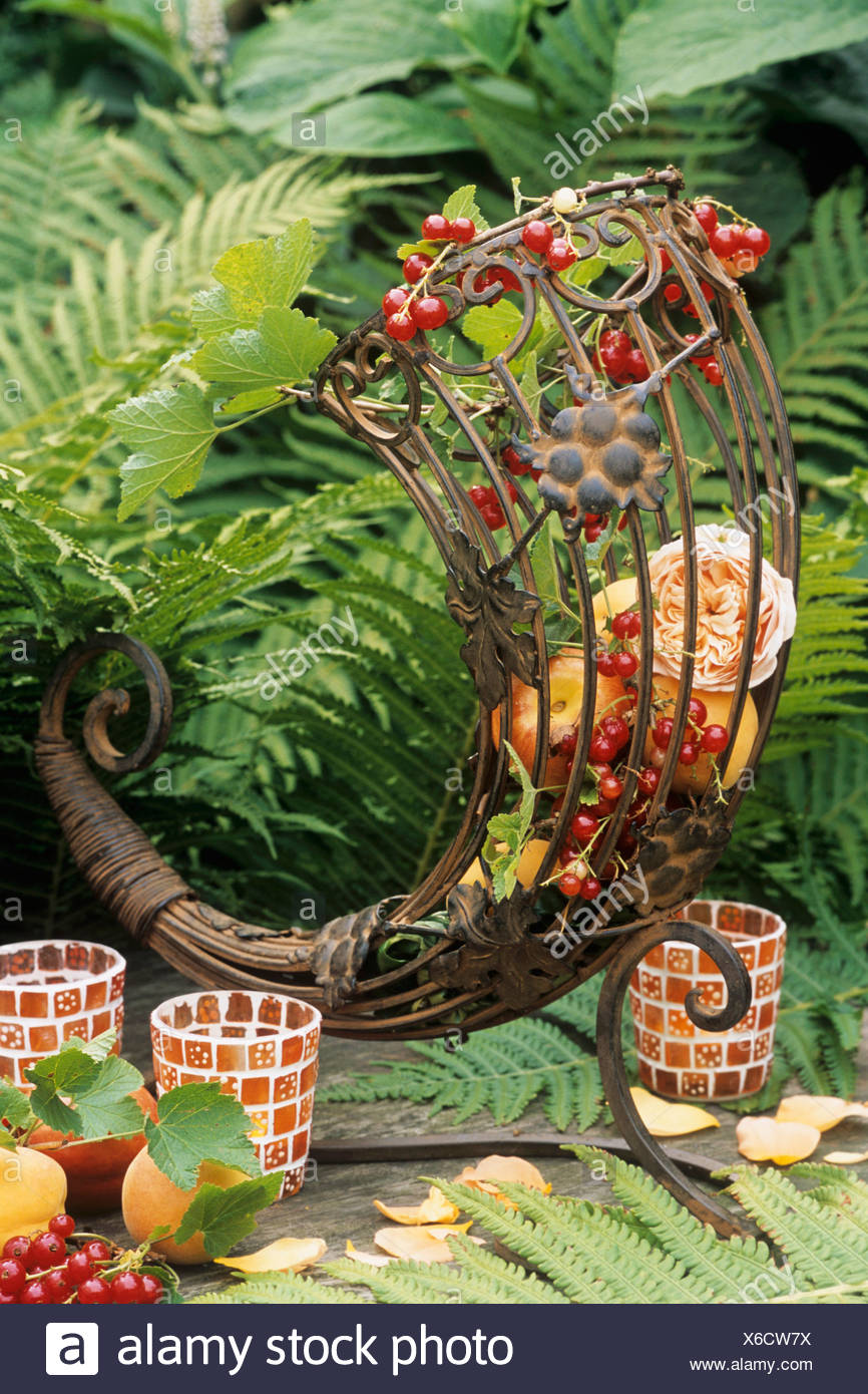 Metal cornucopia filled with apricots, redcurrants & roses - Stock Image