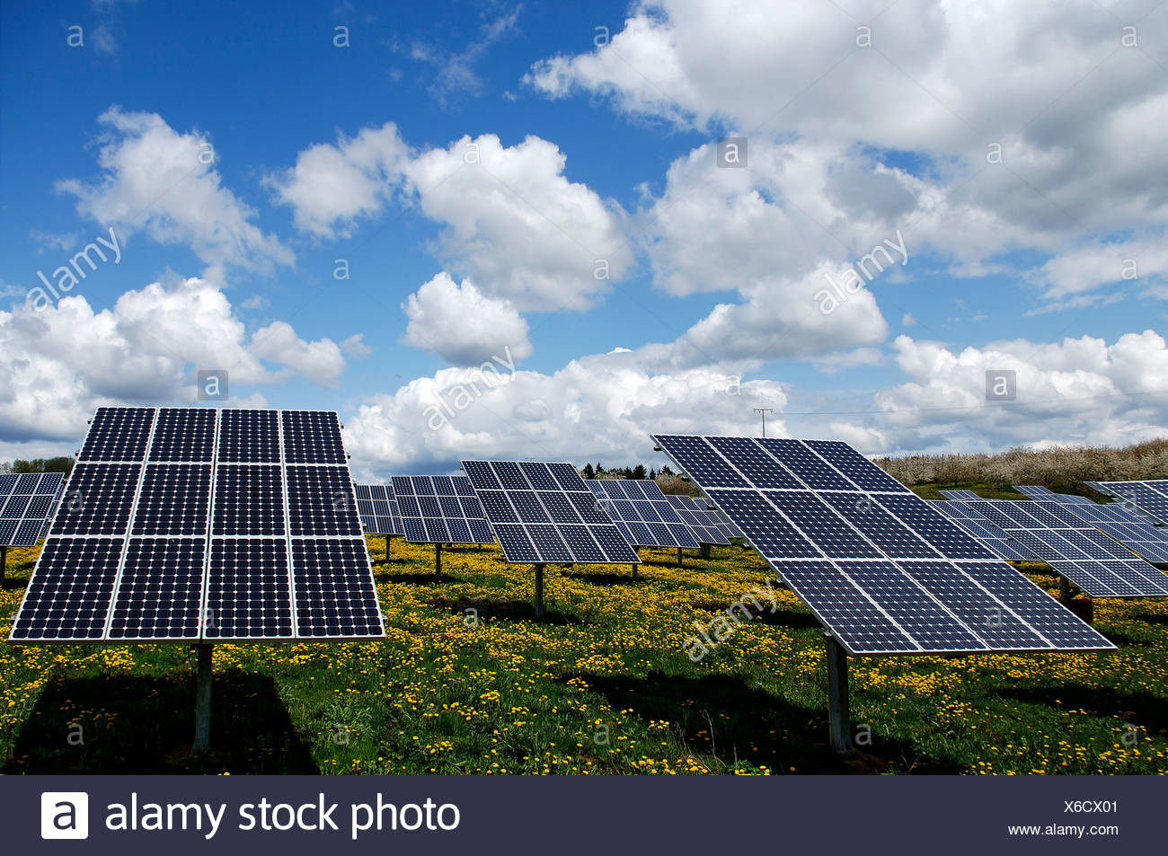Photovoltaics, solar panels in a field near Oberruesselbach, Middle Franconia, Bavaria, Germany, Europe - Stock Image