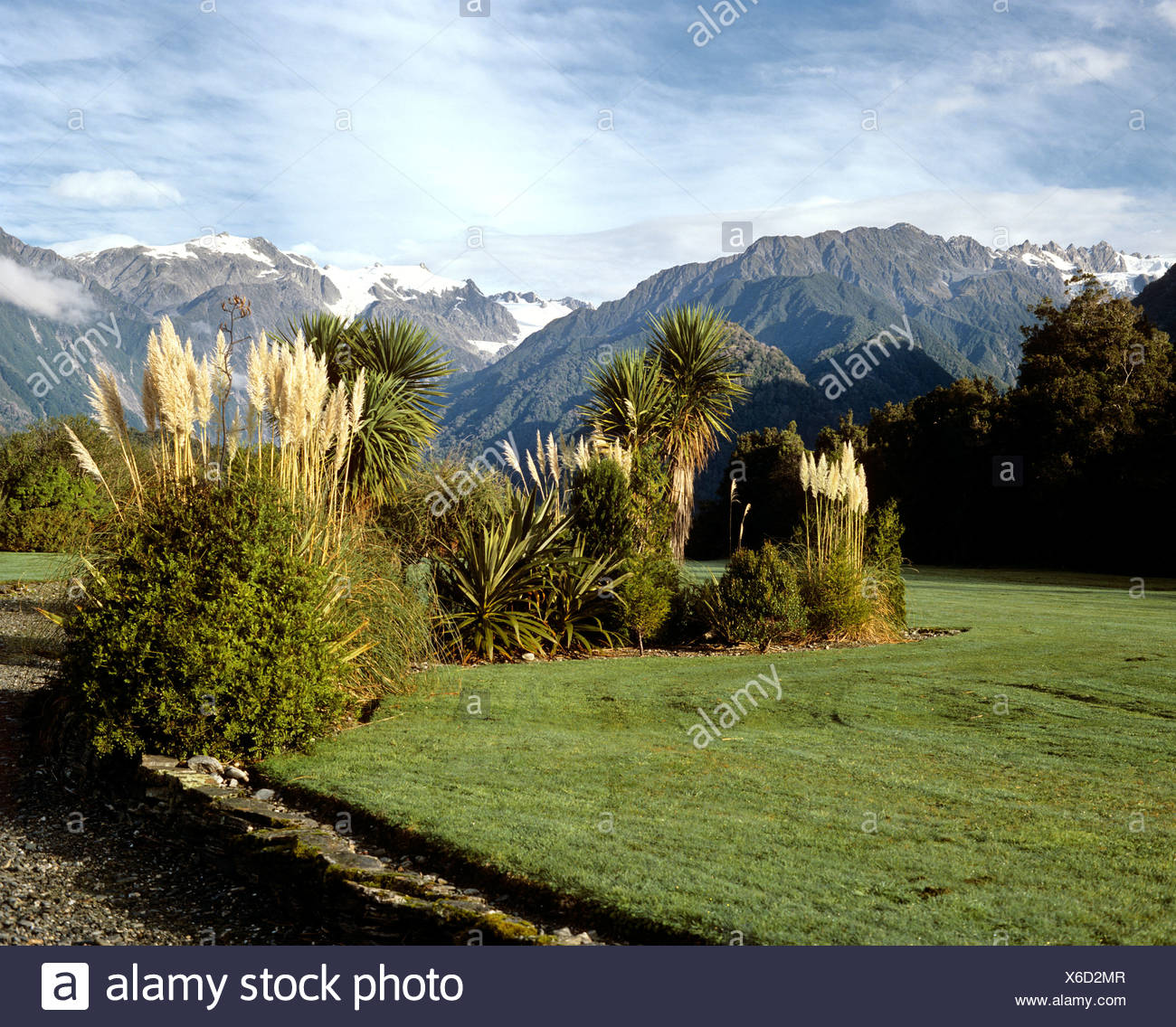 Landscape at the Franz Josef Glacier, South Island, New Zealand - Stock Image