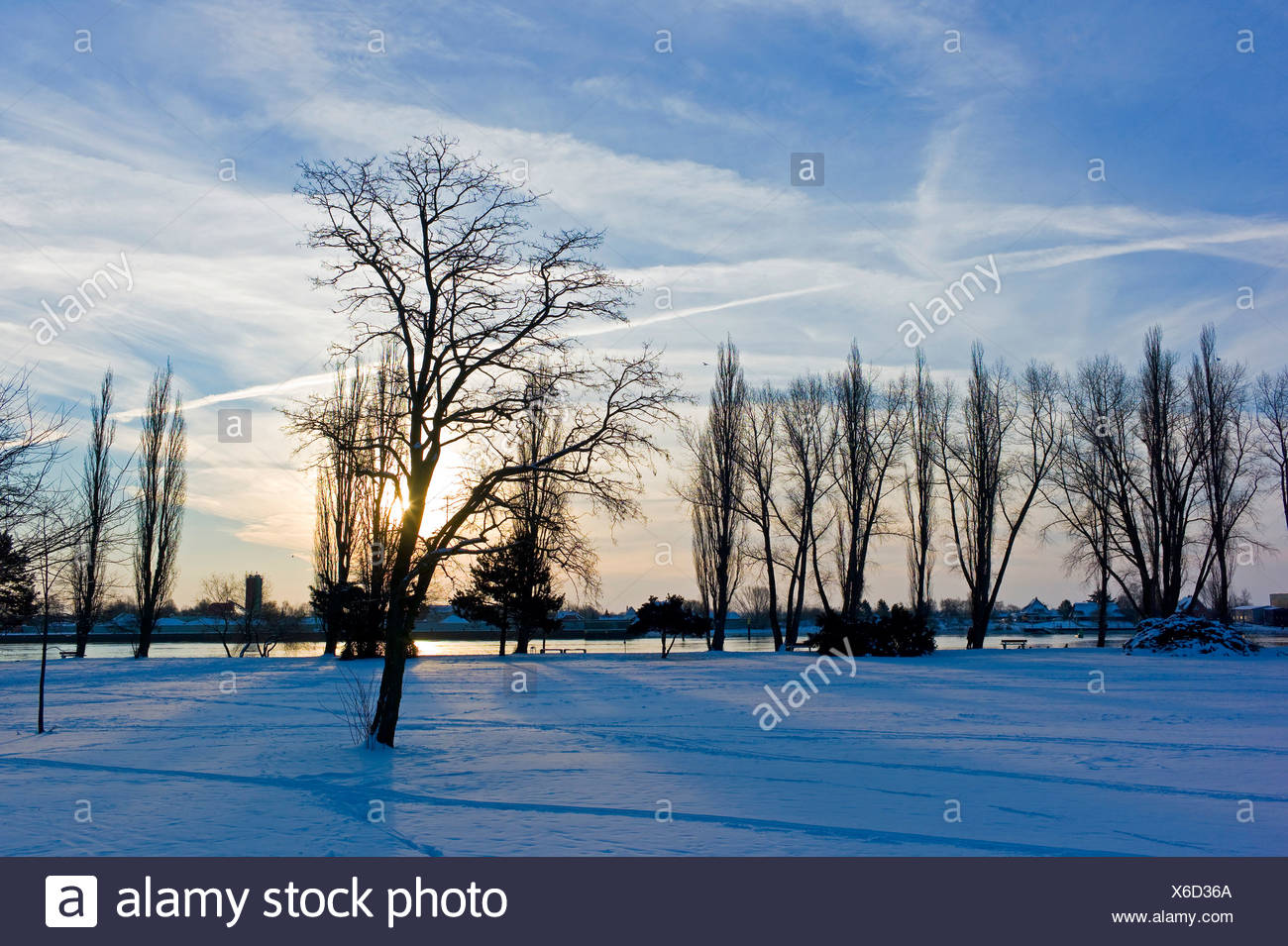 winter scenery of Bahrsplate, Germany, Bremen, Blumenthal Stock Photo