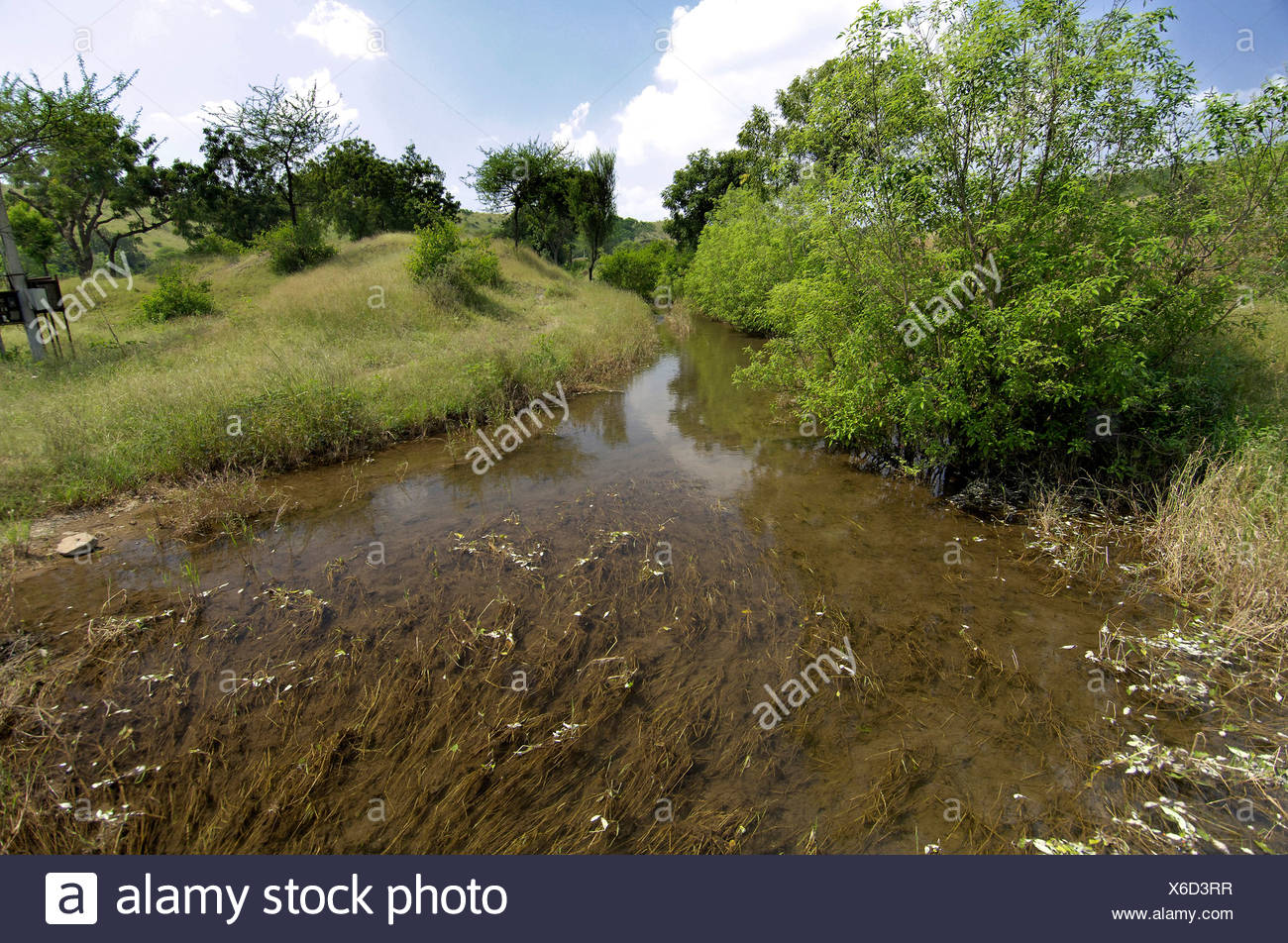 Percolate water coming from the tank for irrigation at Ralegan Siddhi near Pune ; Maharashtra ; India - Stock Image